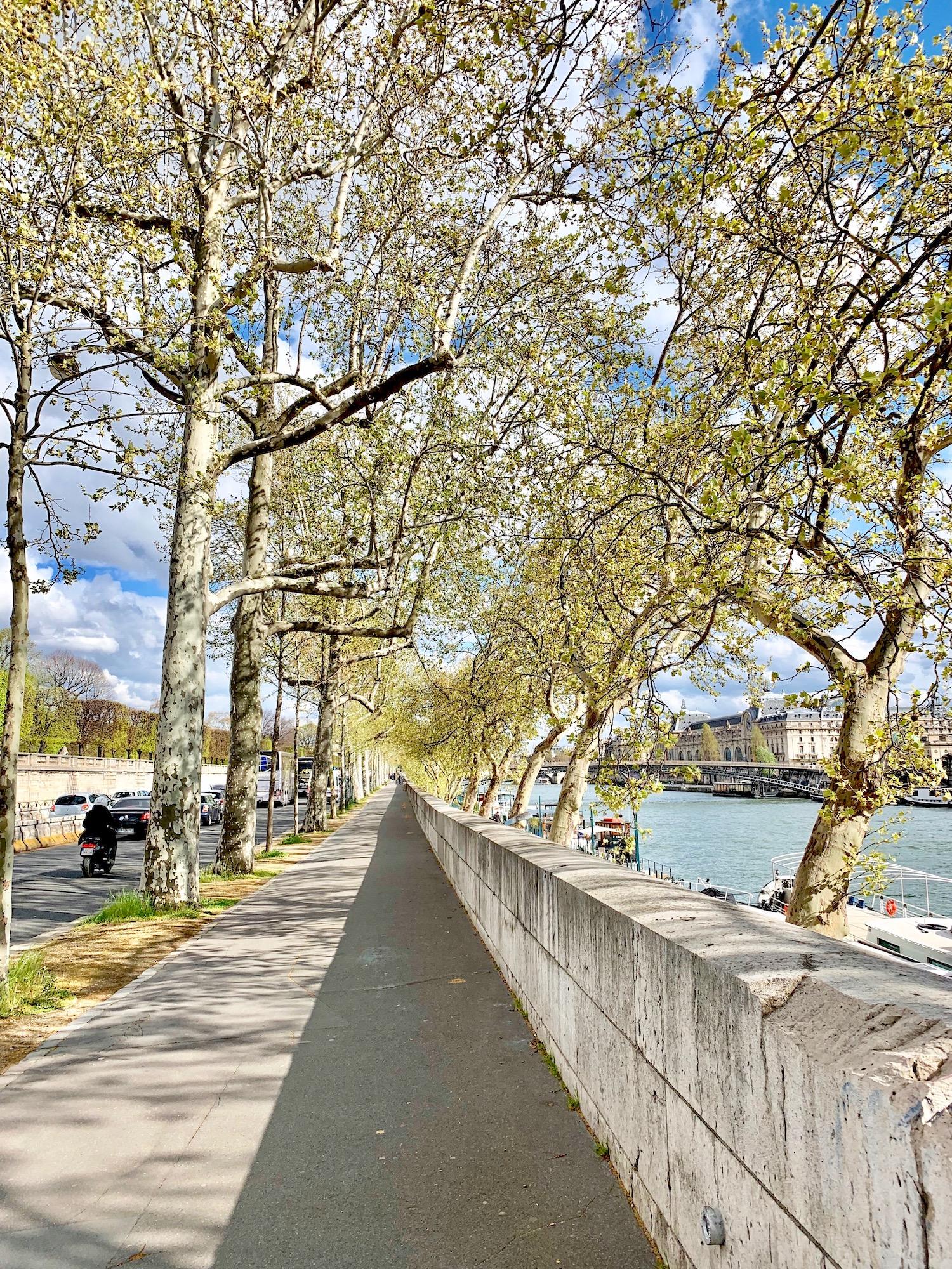 Spring along the Seine