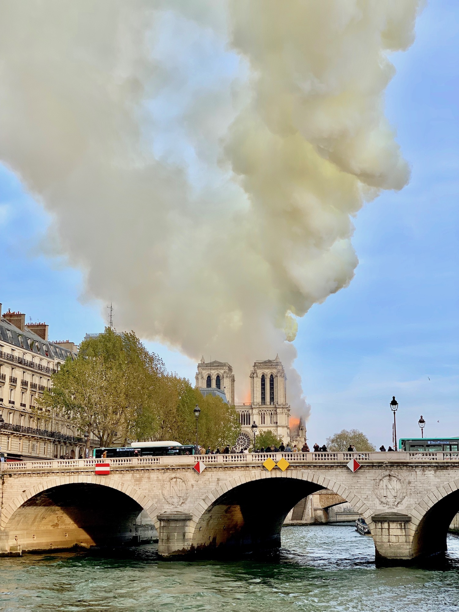 Notre Dame towers during the fire