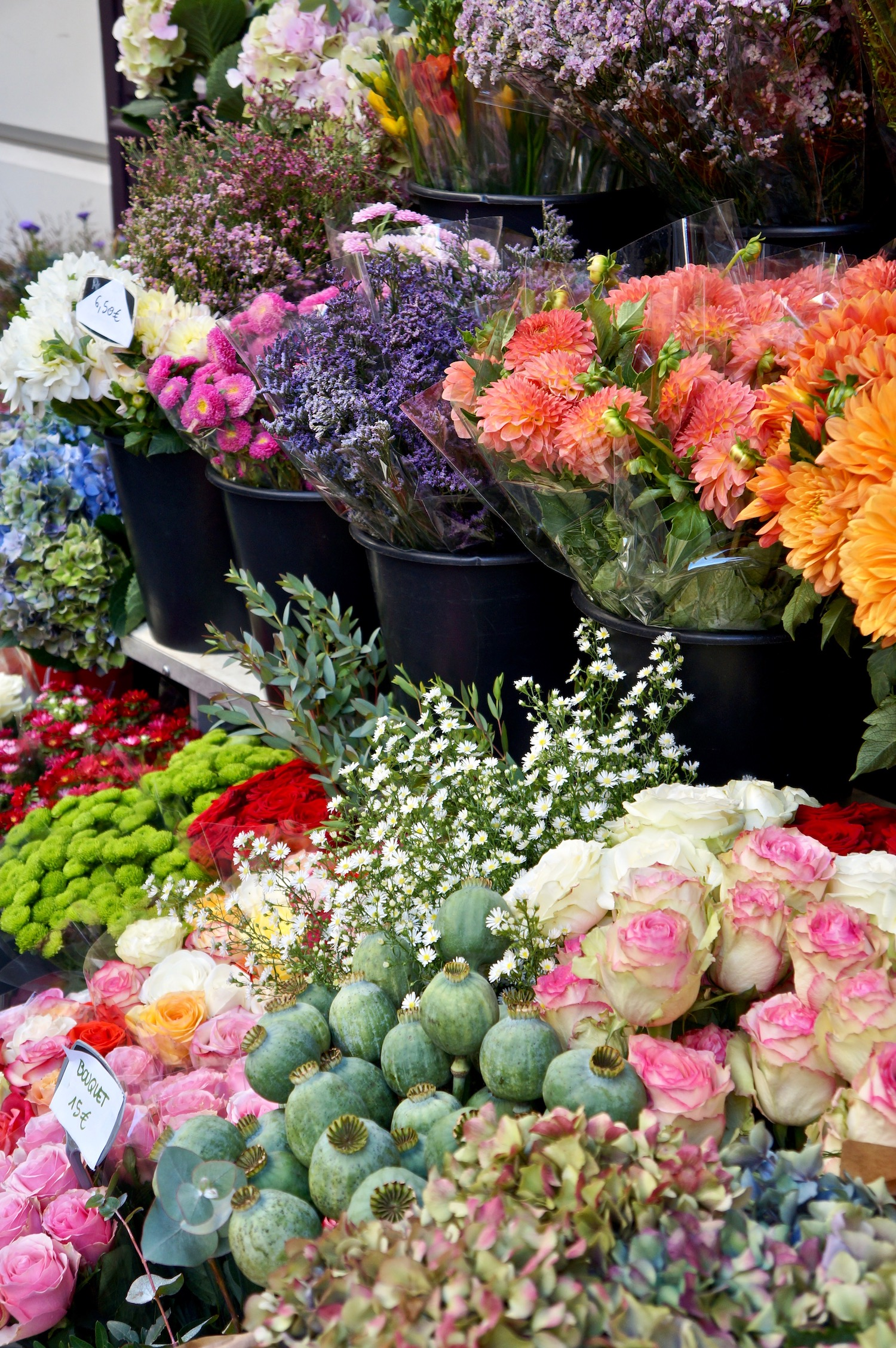 september in paris flowers