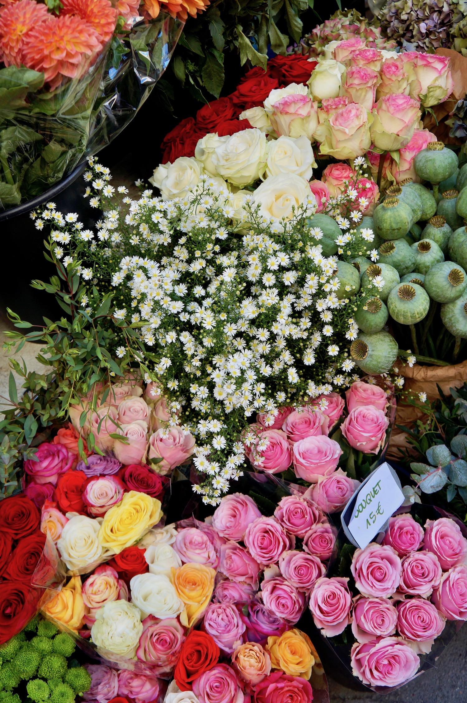 Fall Flowers in Paris