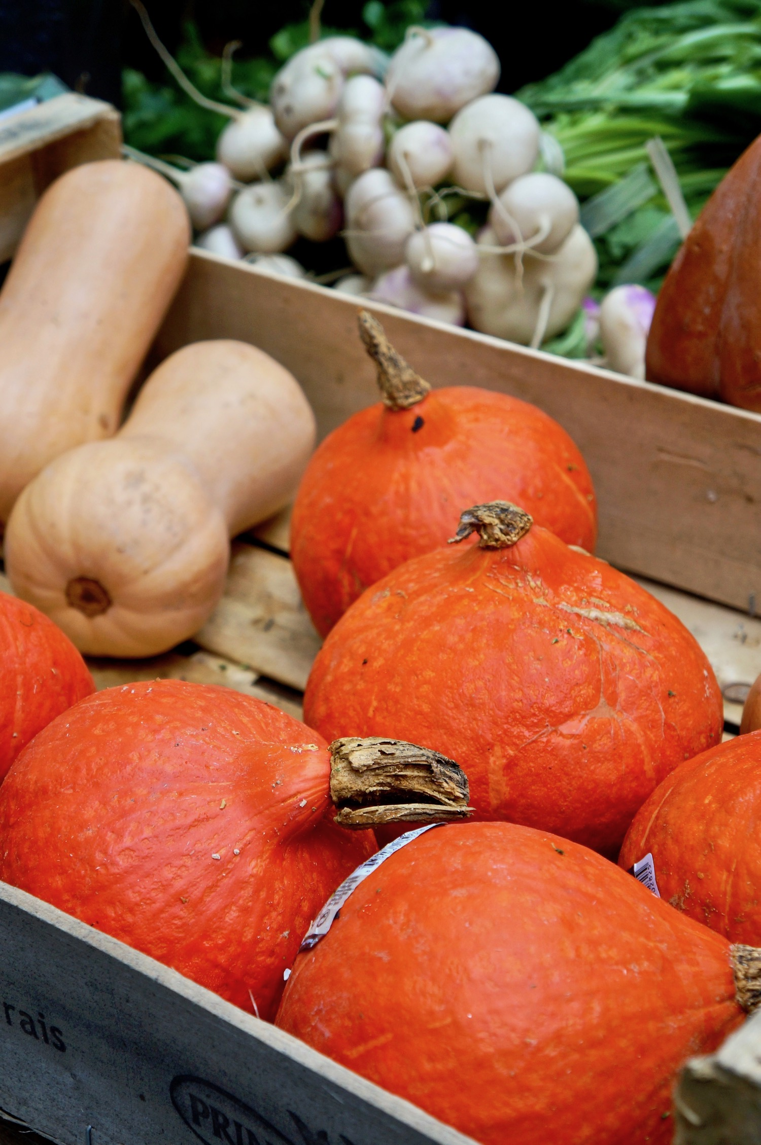 Marché Raspail Pumpkins