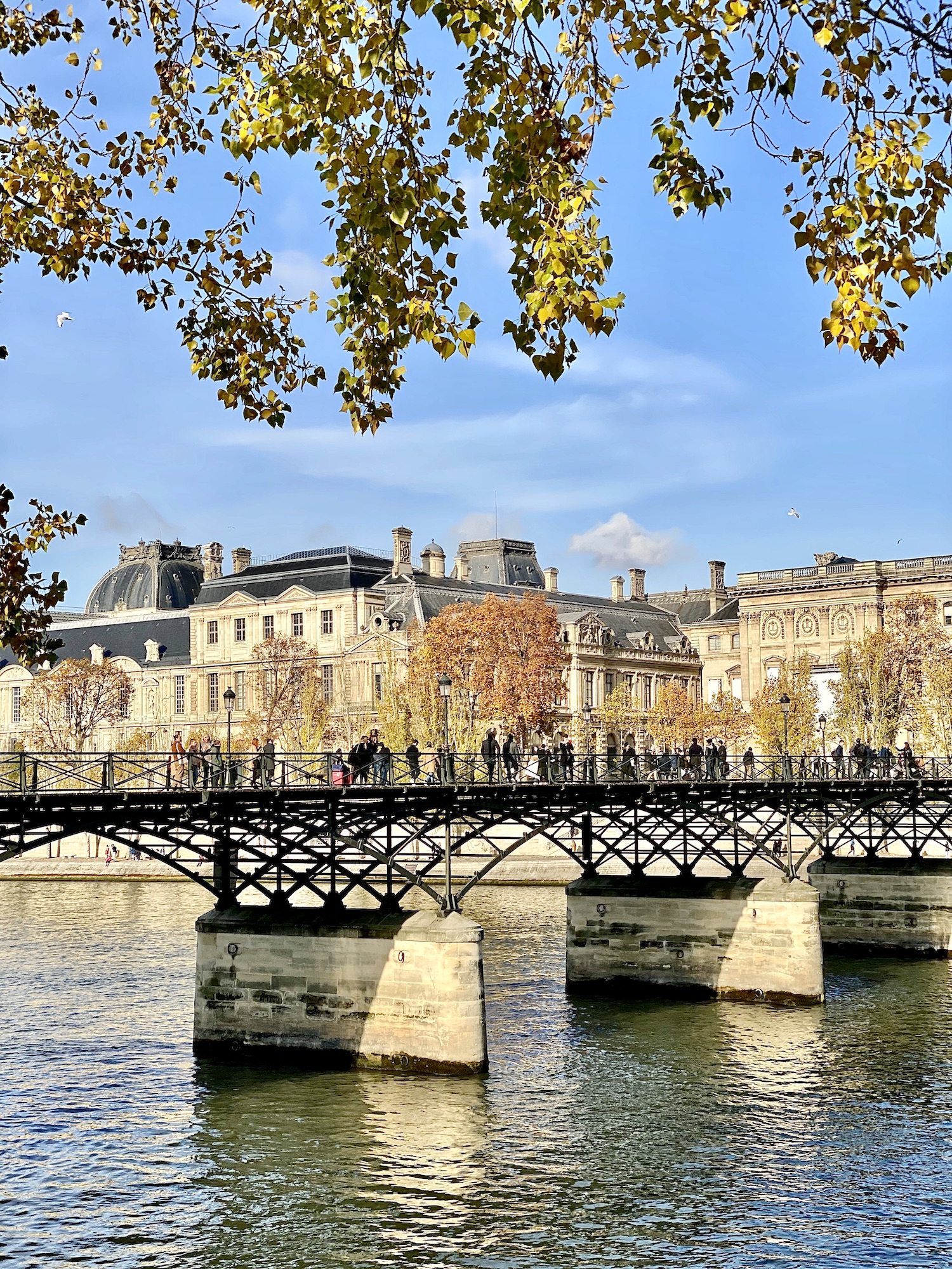 Pont des Arts November