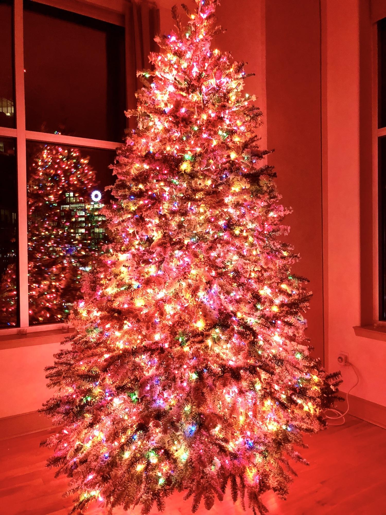 Tree 2017 lights