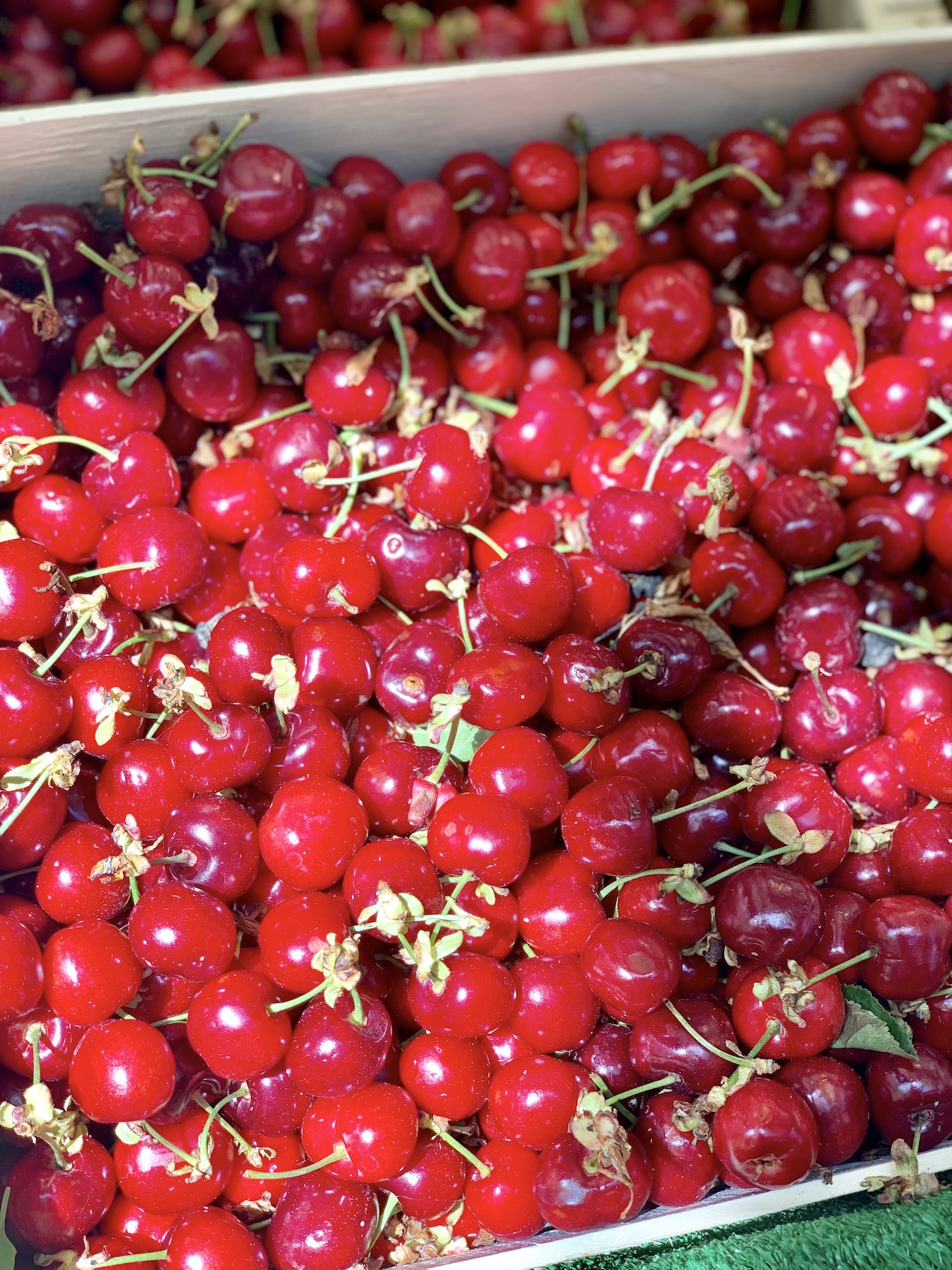 Cherries at Marché Raspail