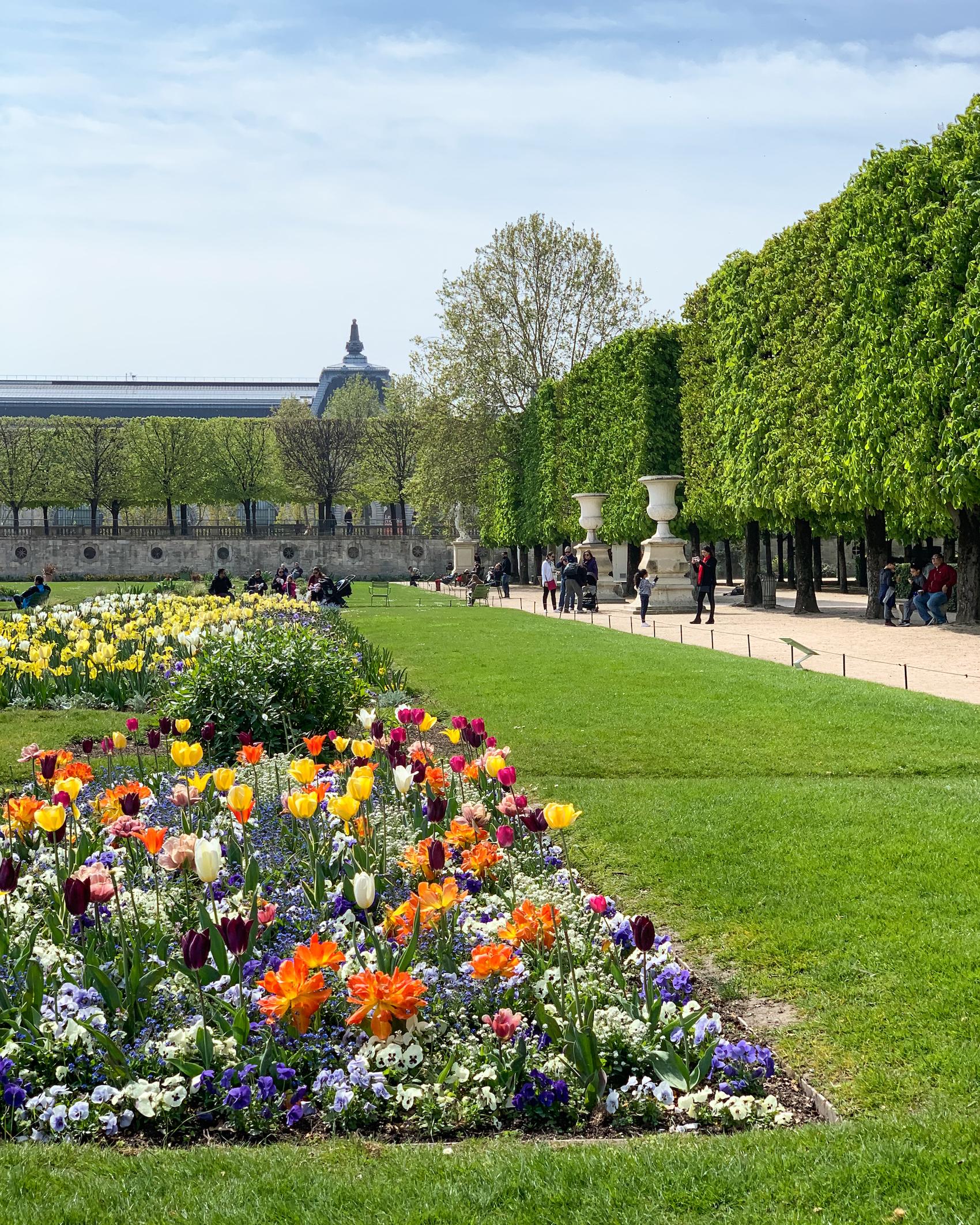 Spring flower beds in Paris