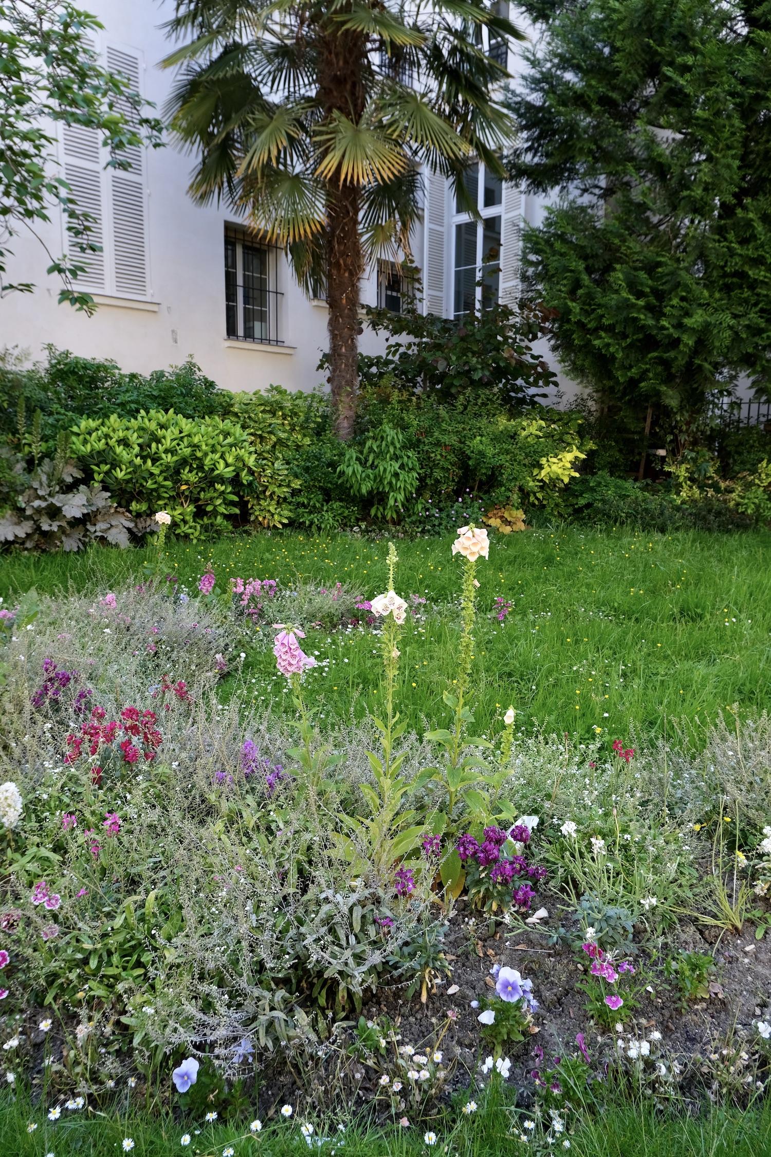 small garden in Paris