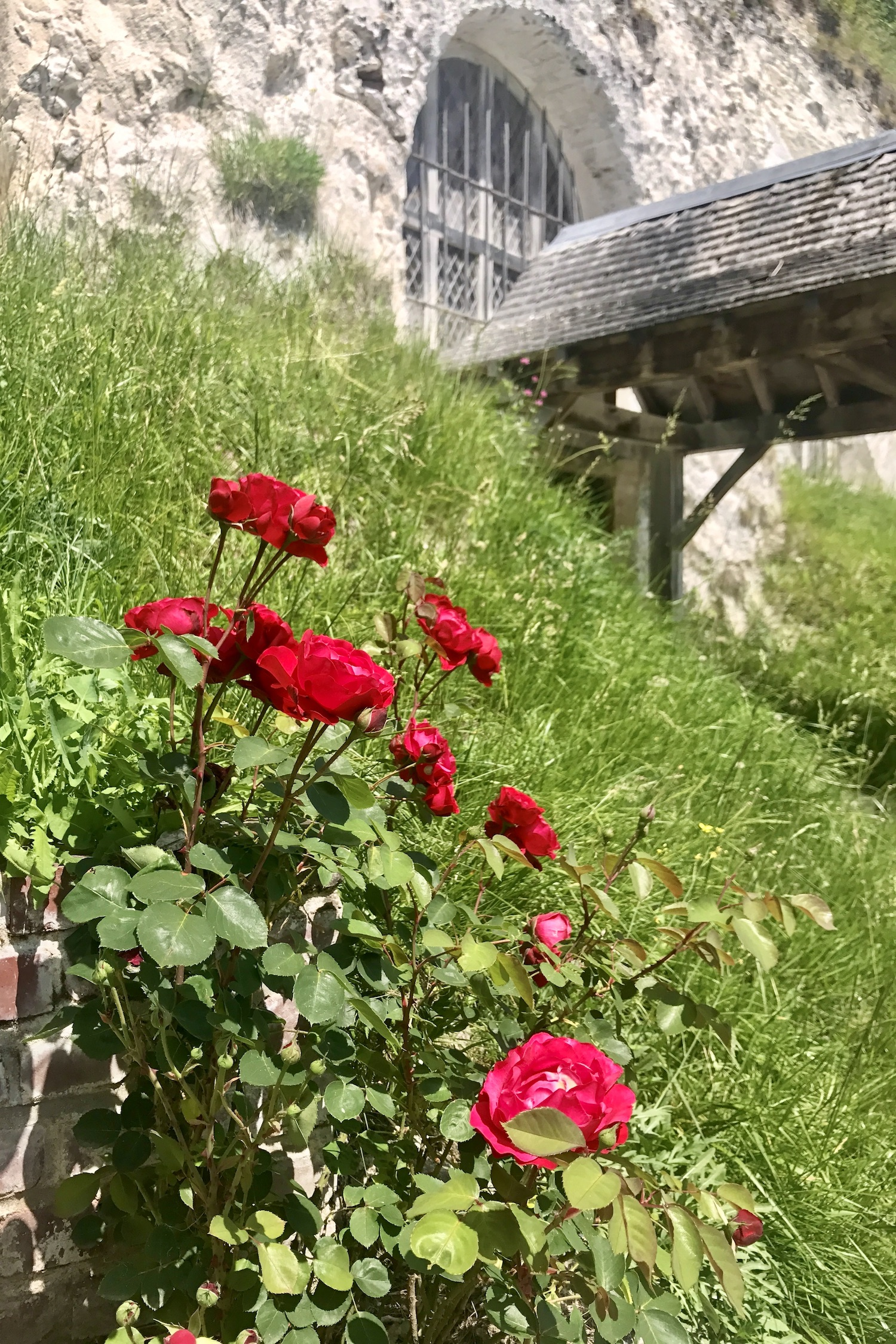 Church in a cliff with red roses