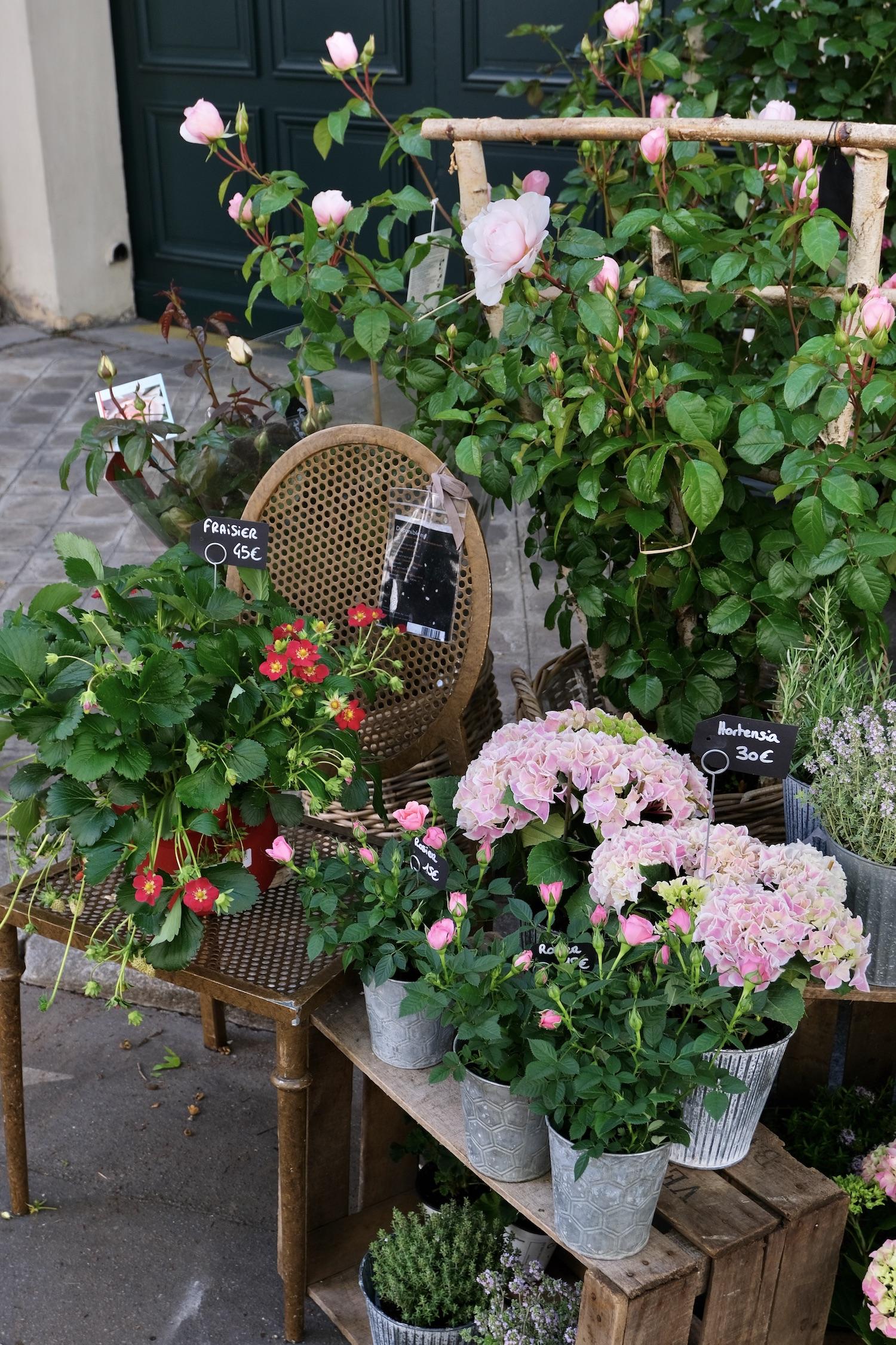 Left Bank Flower shop
