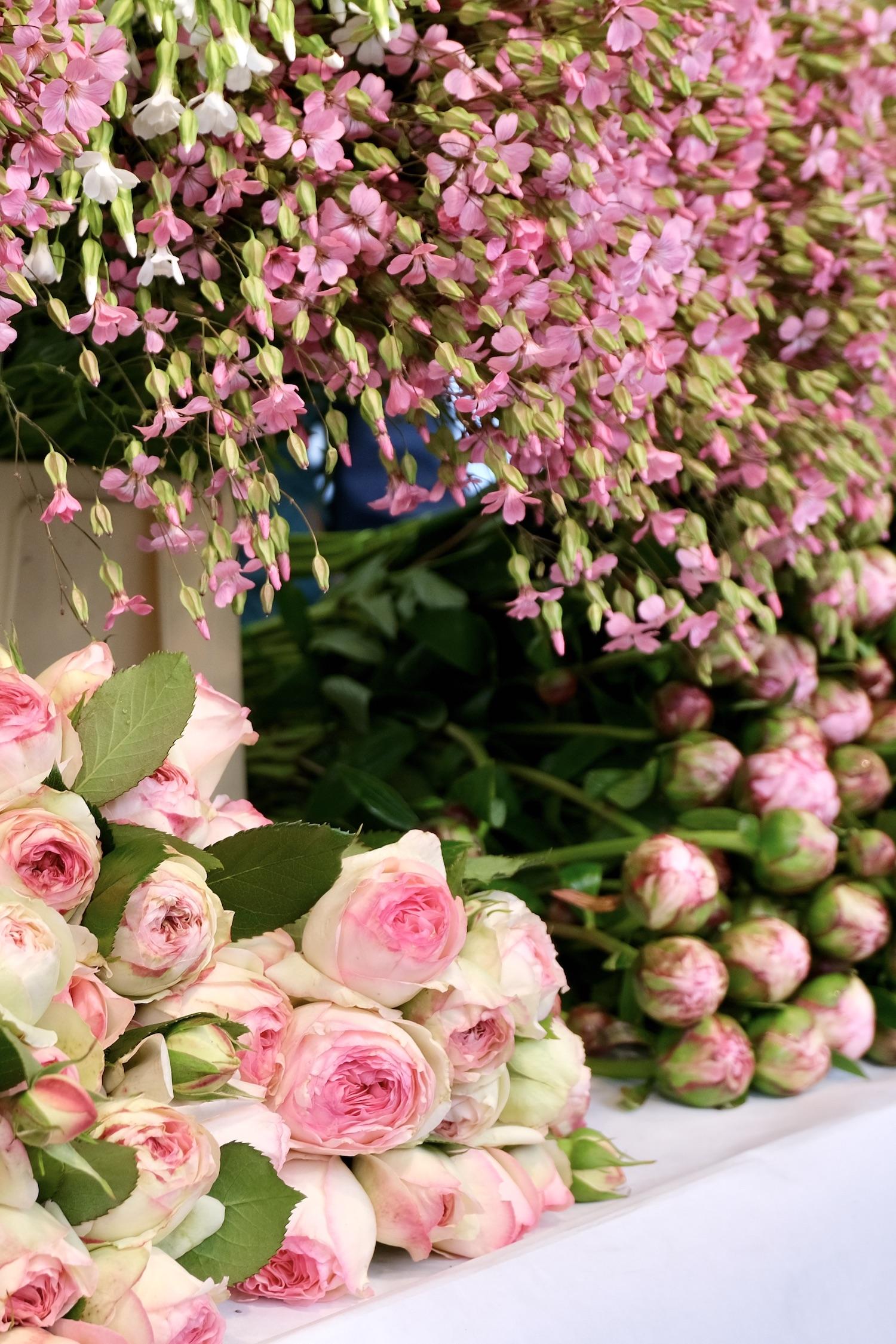 Flowers at the Marché Raspail following my post-confinement return to Paris