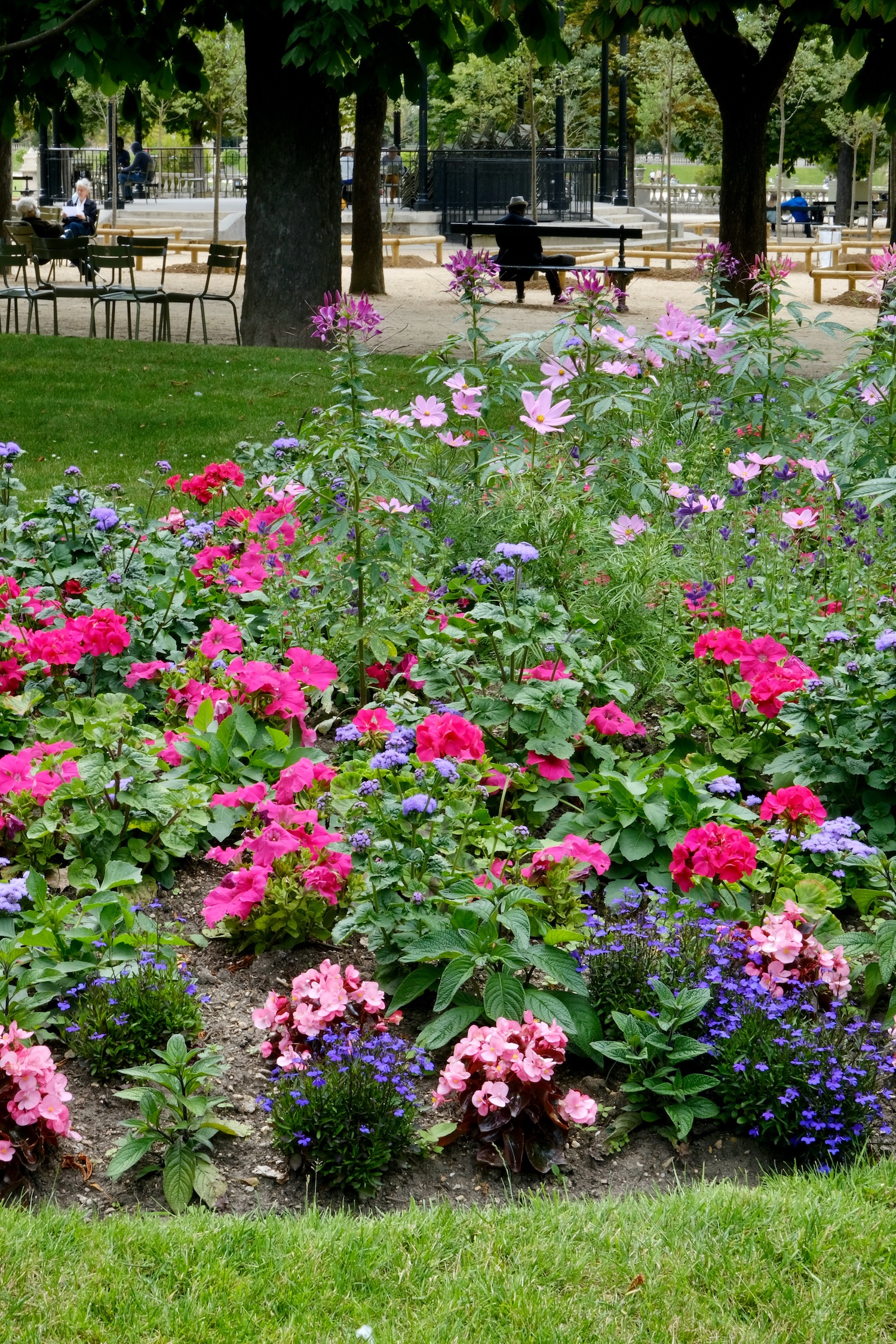 Luxembourg Garden flower beds
