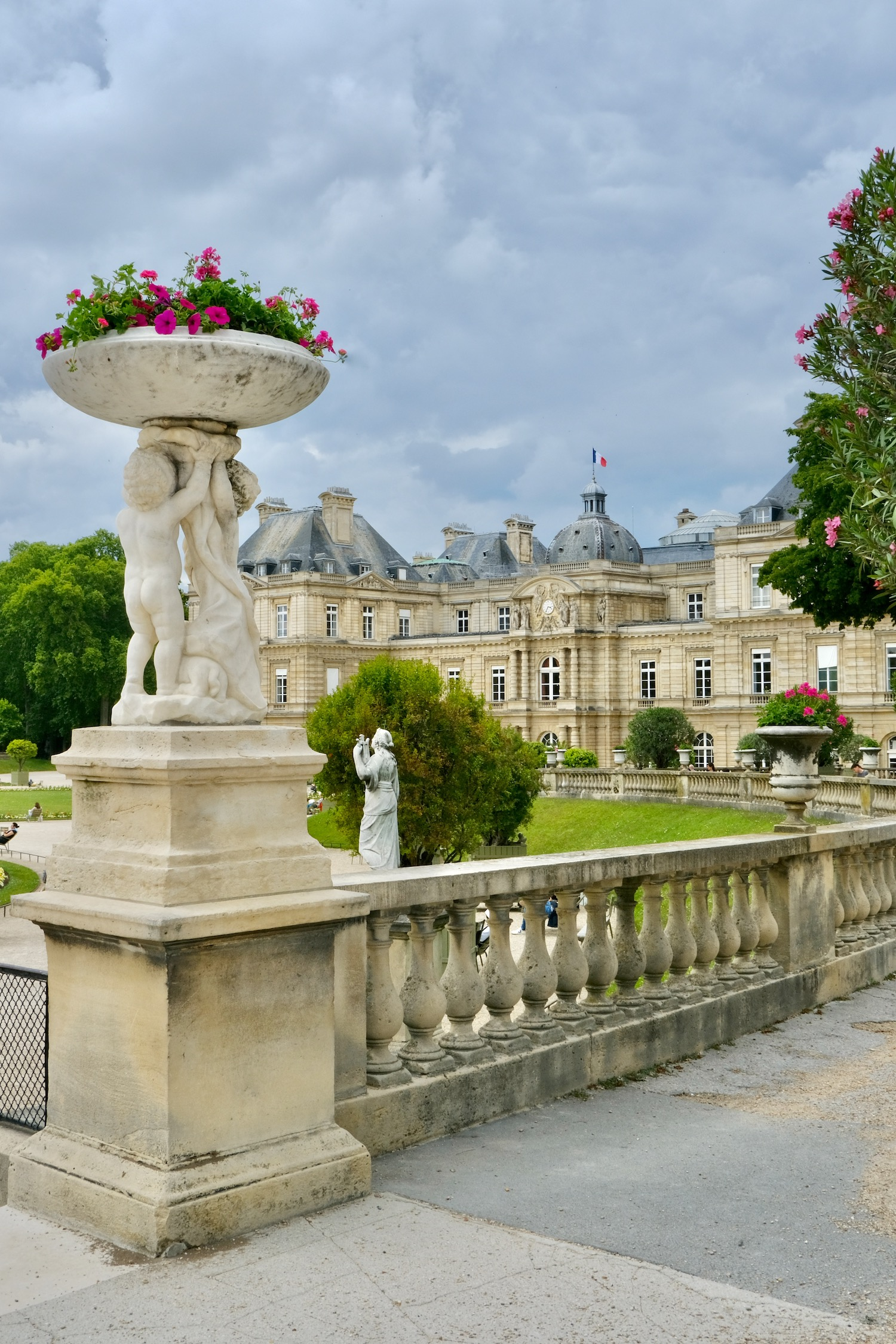 Pink flowers at Luxembourg Garden