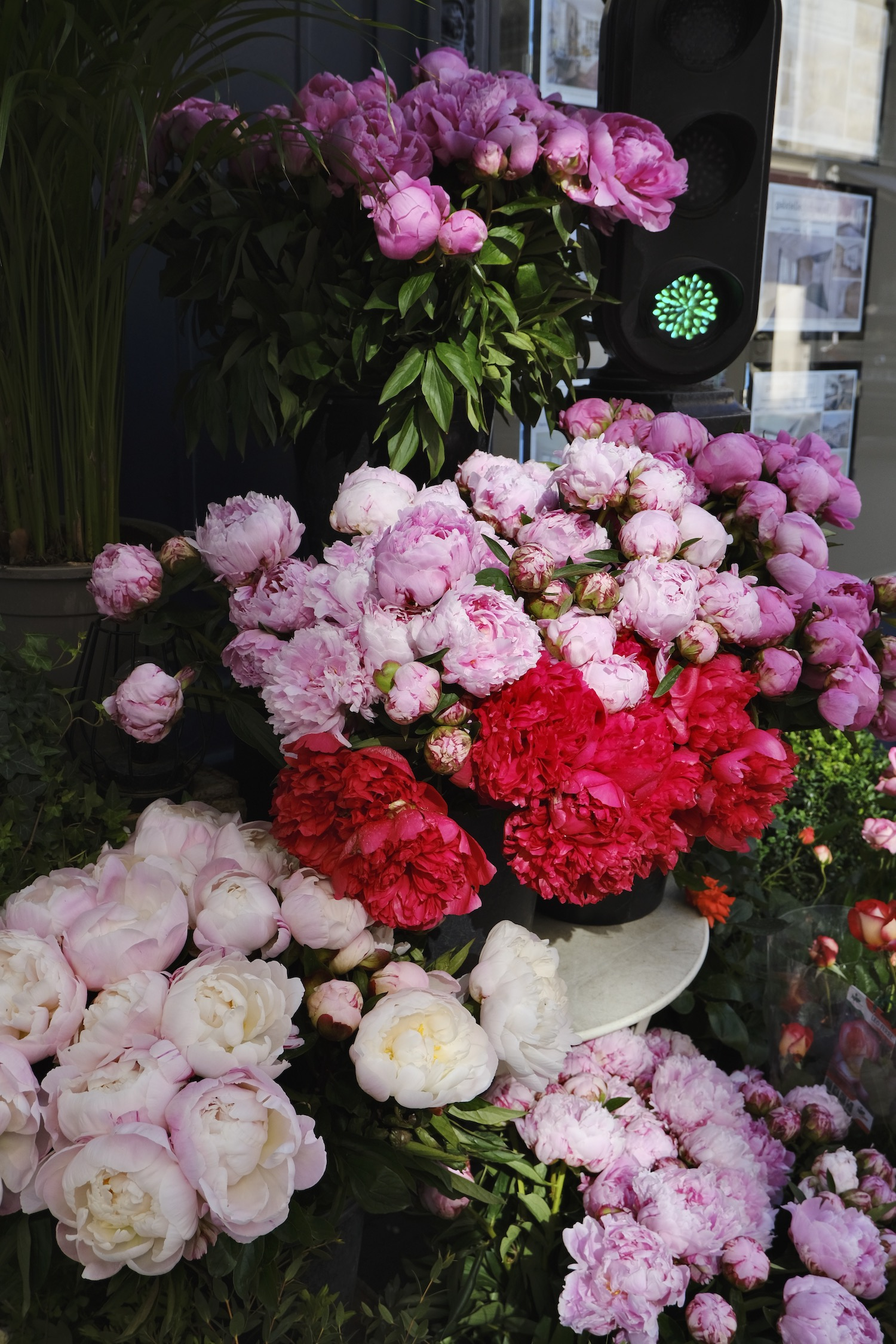 June Five Friday Finds from France Peonies in Paris. This week includes Ruinart's new eco-packaging