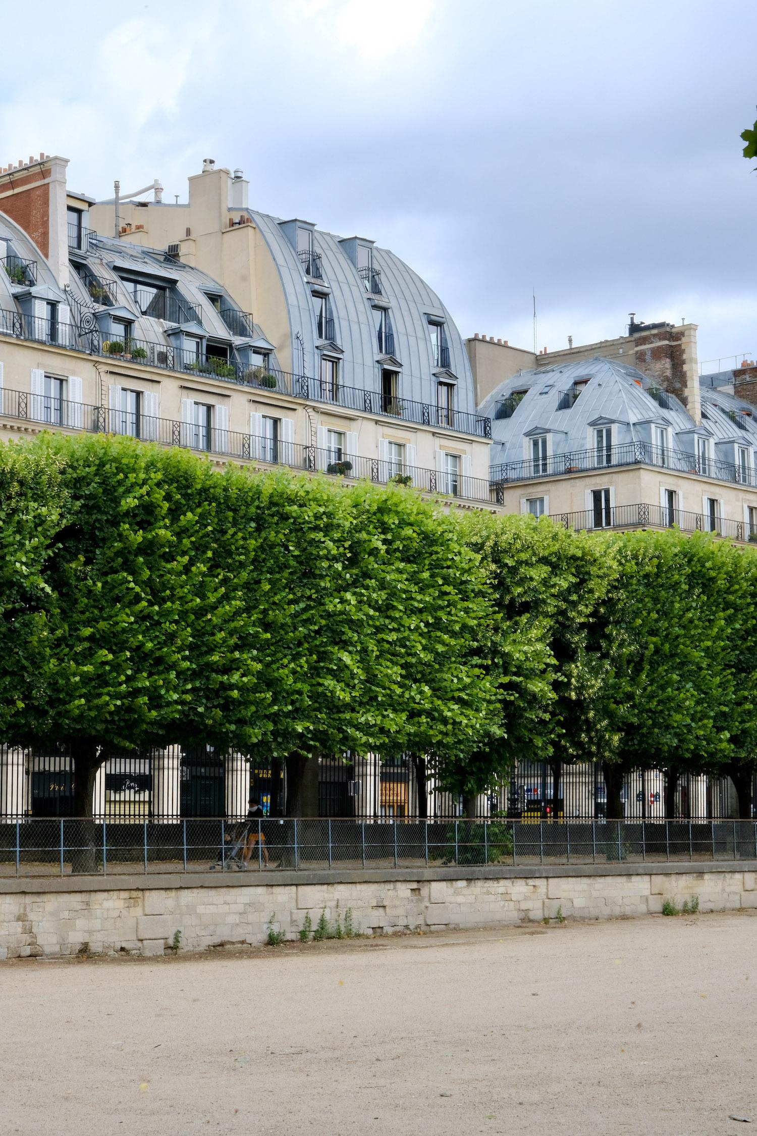 Tuileries Garden versus Luxembourg Garden in Paris