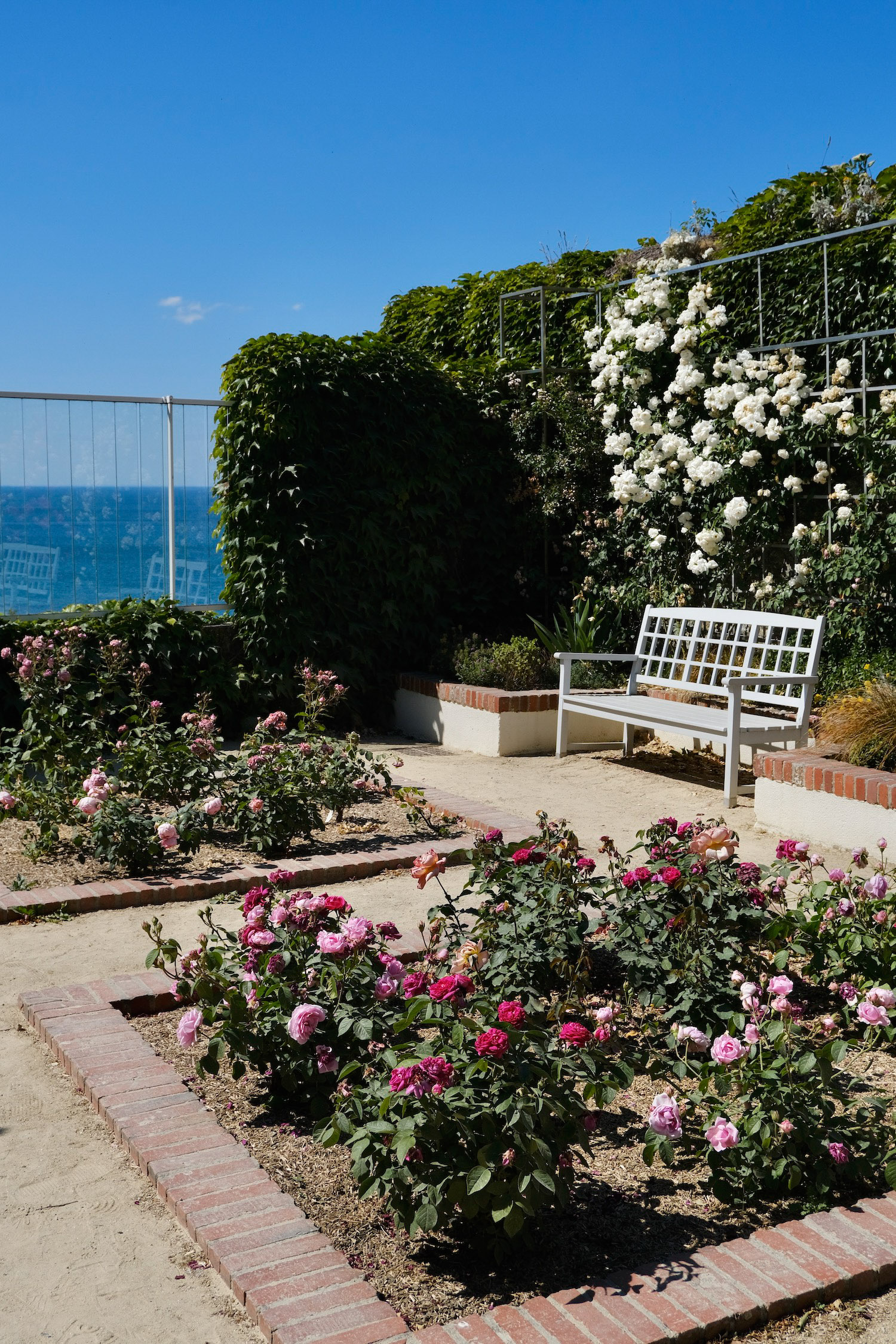 Rose garden at the Christian Dior Museum