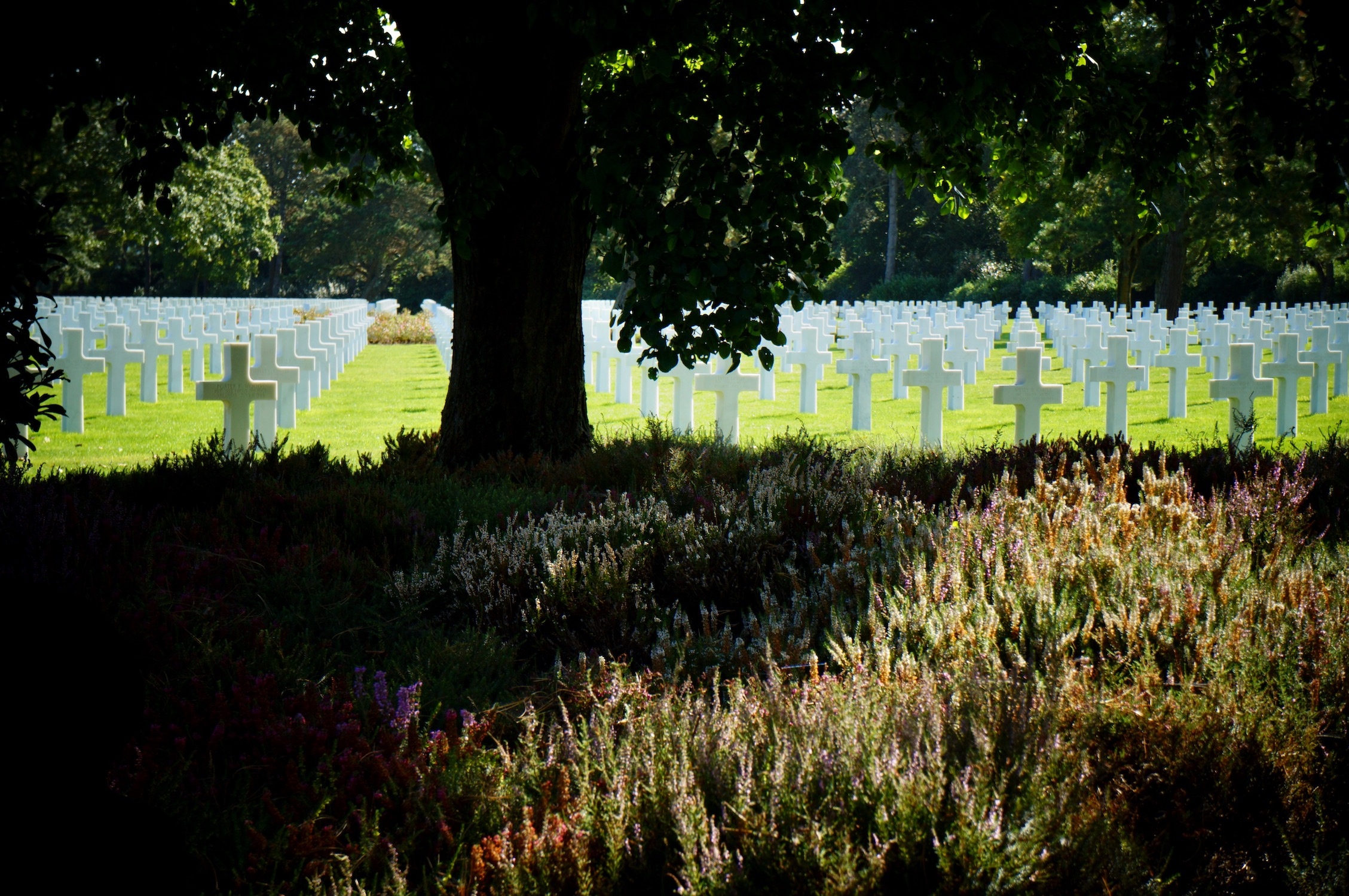 The American Cemetery in Normandy under the shade