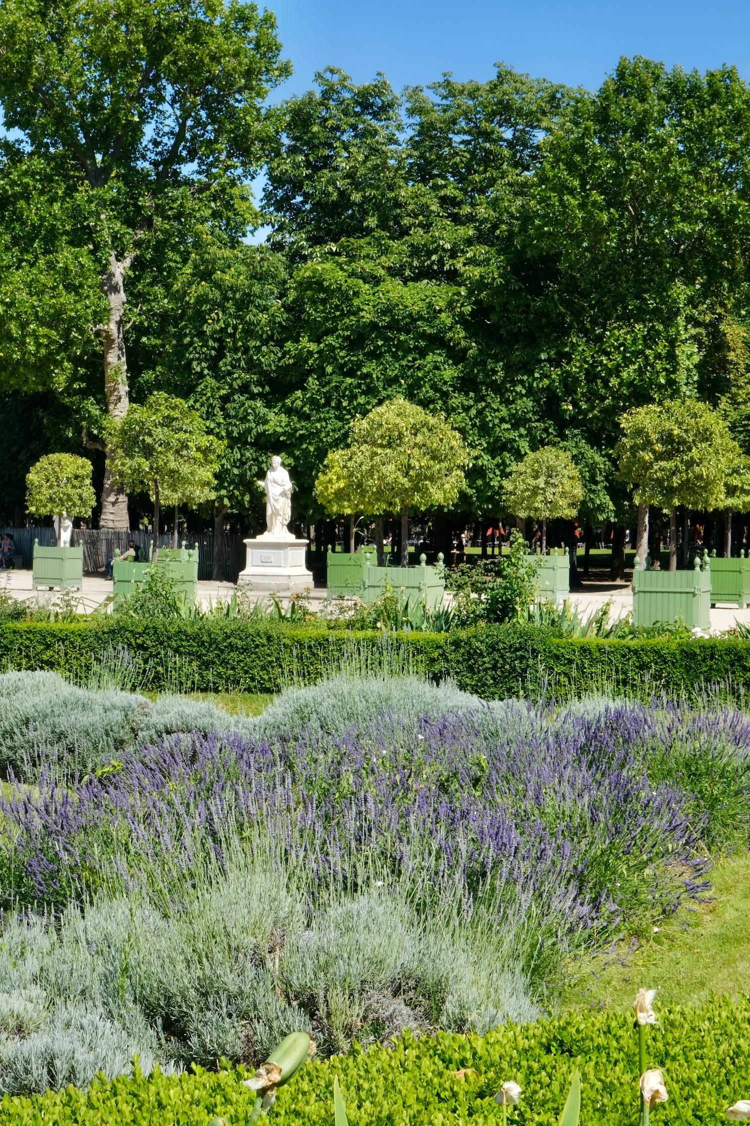 Provence in Paris