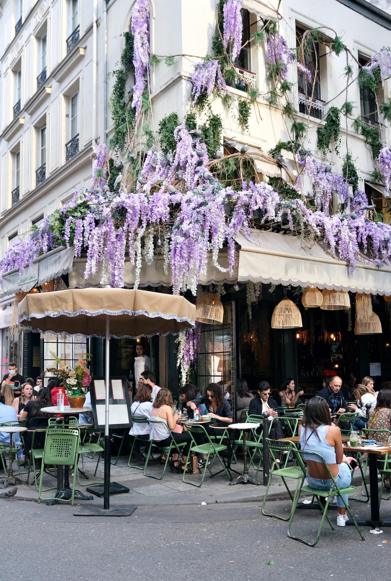 Maison Sauvage wisteria