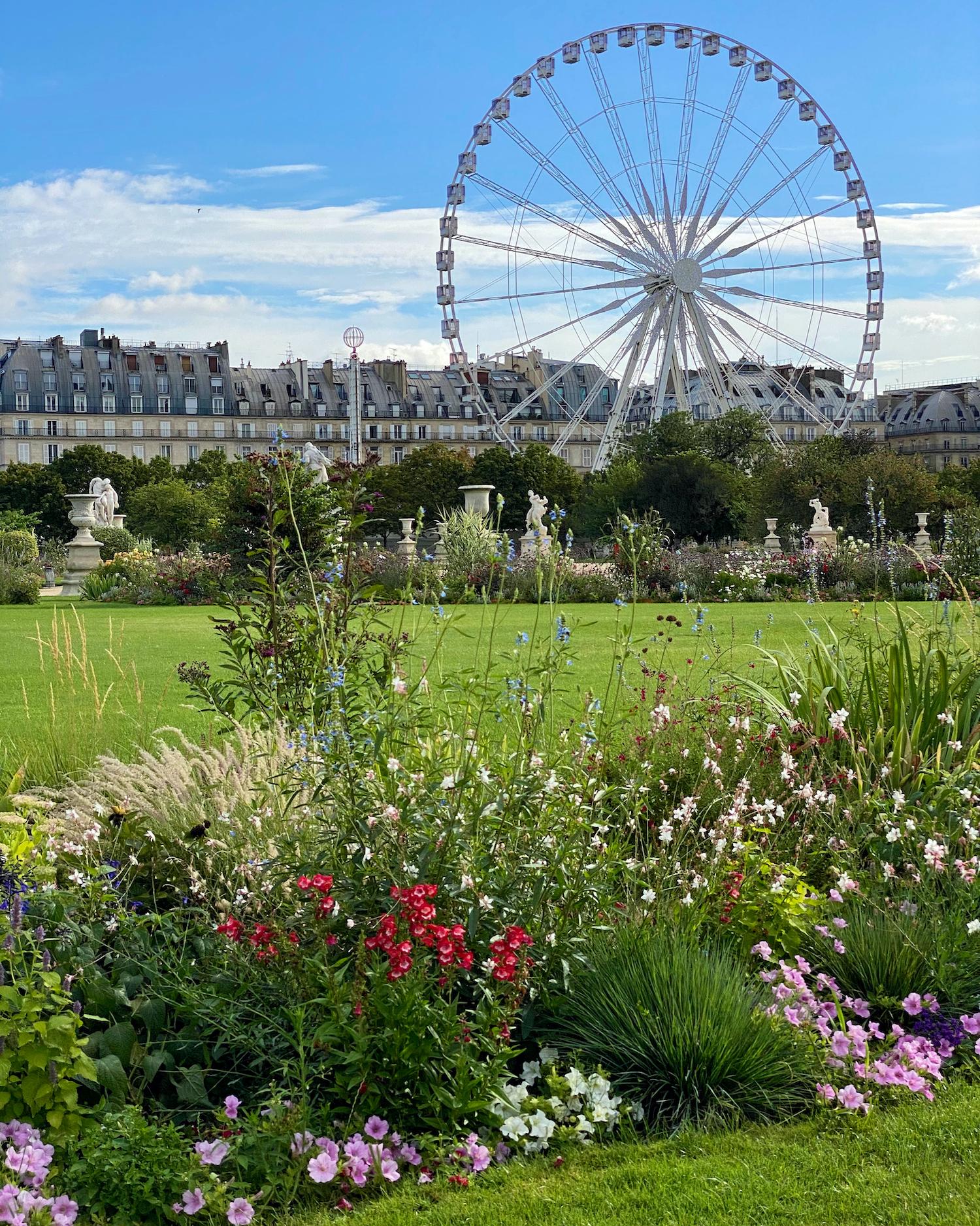 Tuileries flower beds