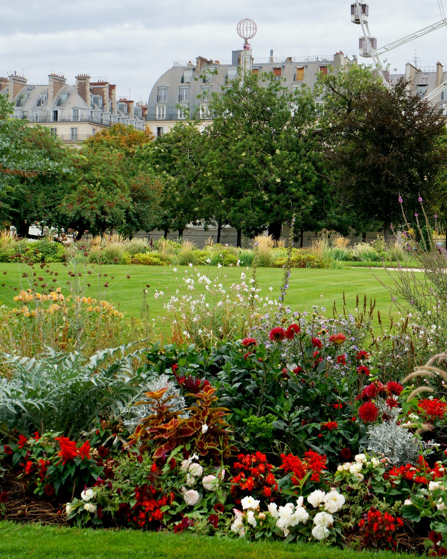Red flower beds Tuileries