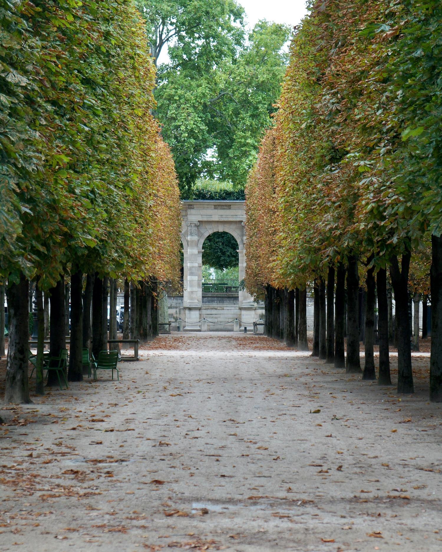 Tuileries garden summer