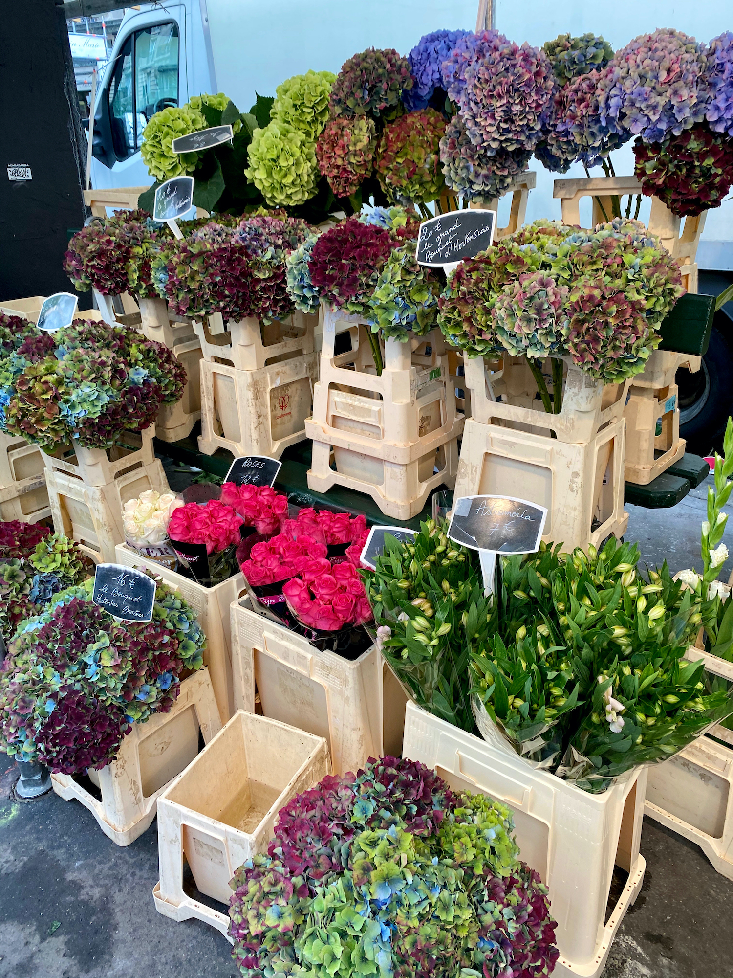 fall flowers at Marché Raspail