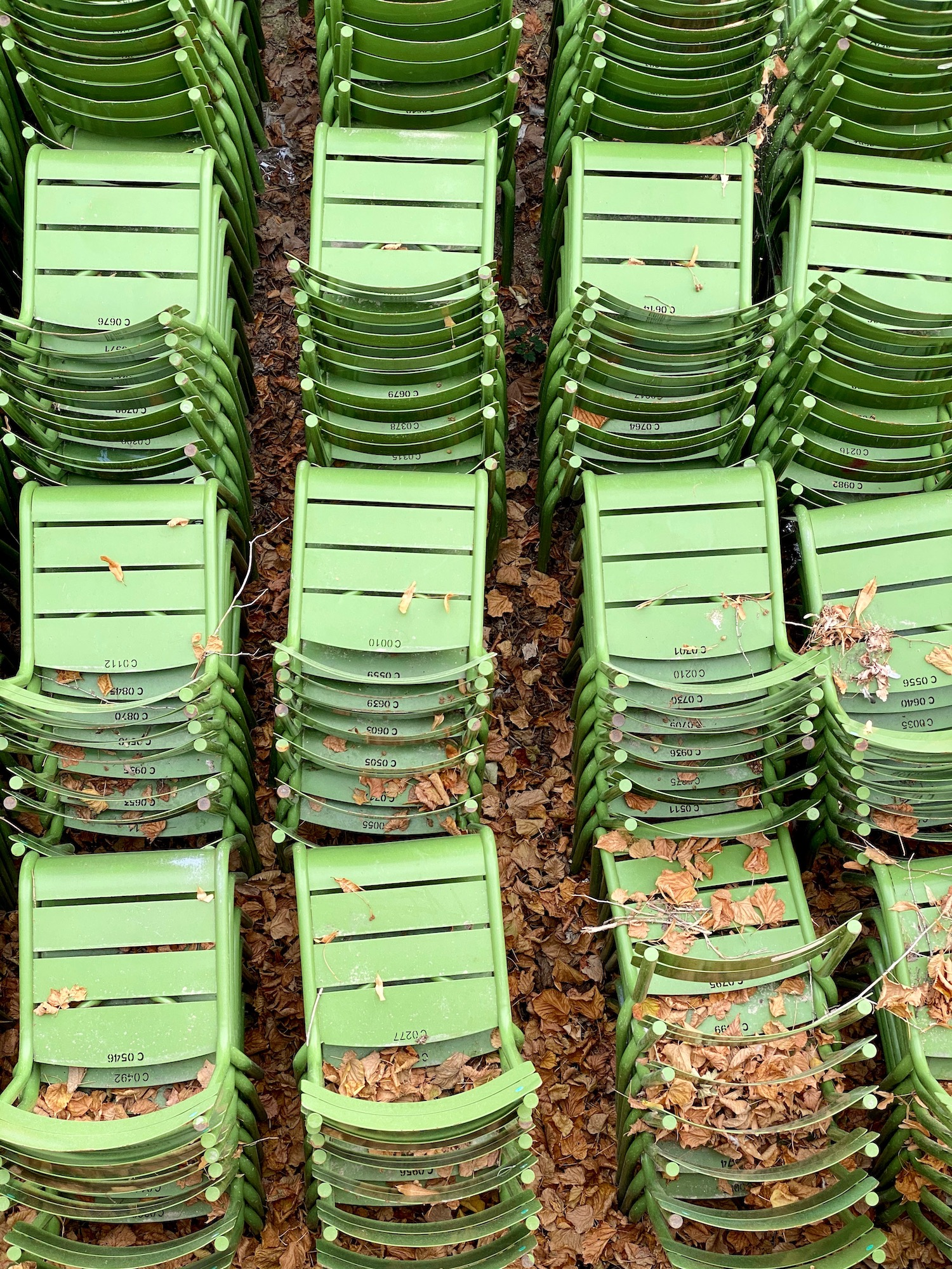 Green park chairs