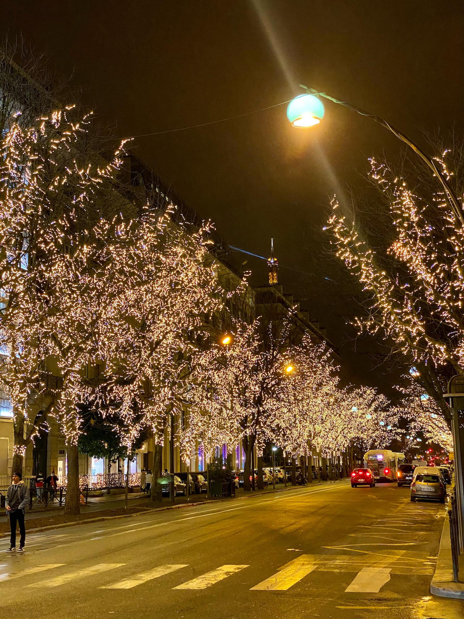 avenue montaigne christmas lights
