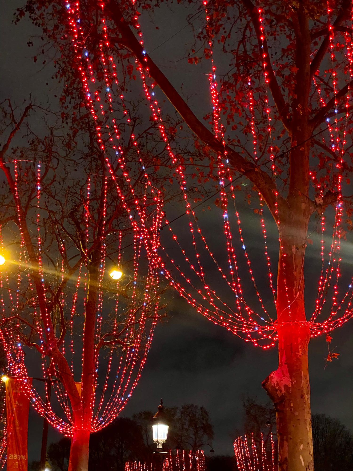 champs-élysées christmas lights