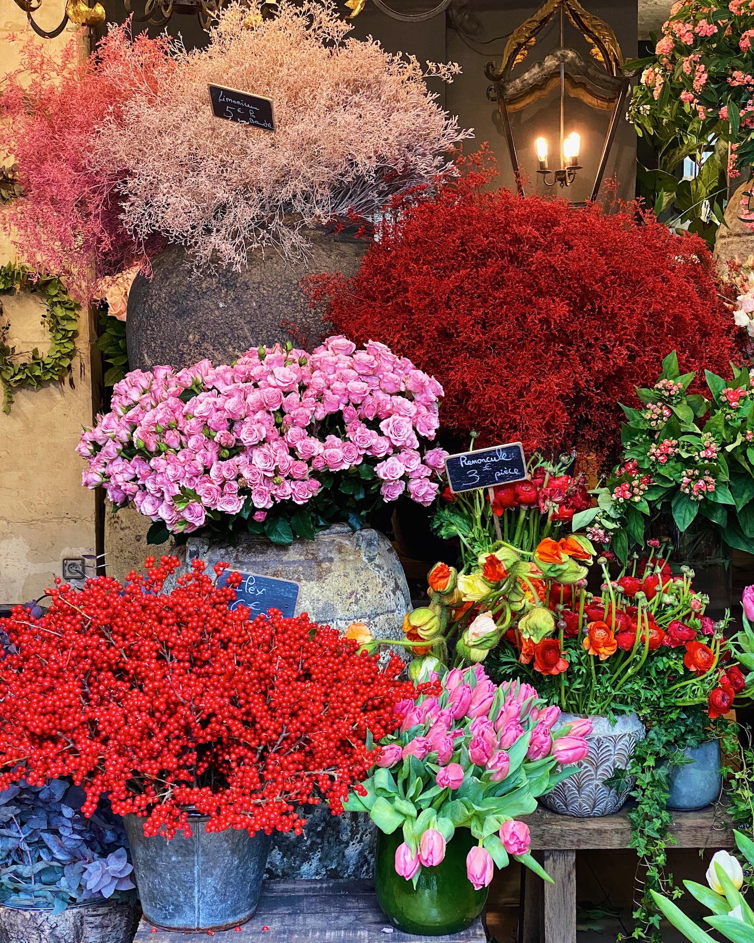 december flowers paris