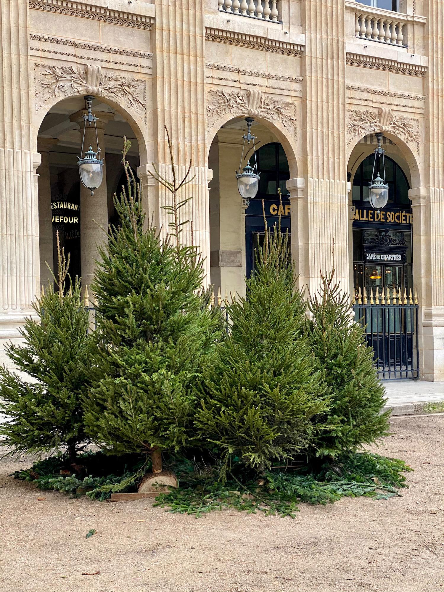 palais royal christmas 2020