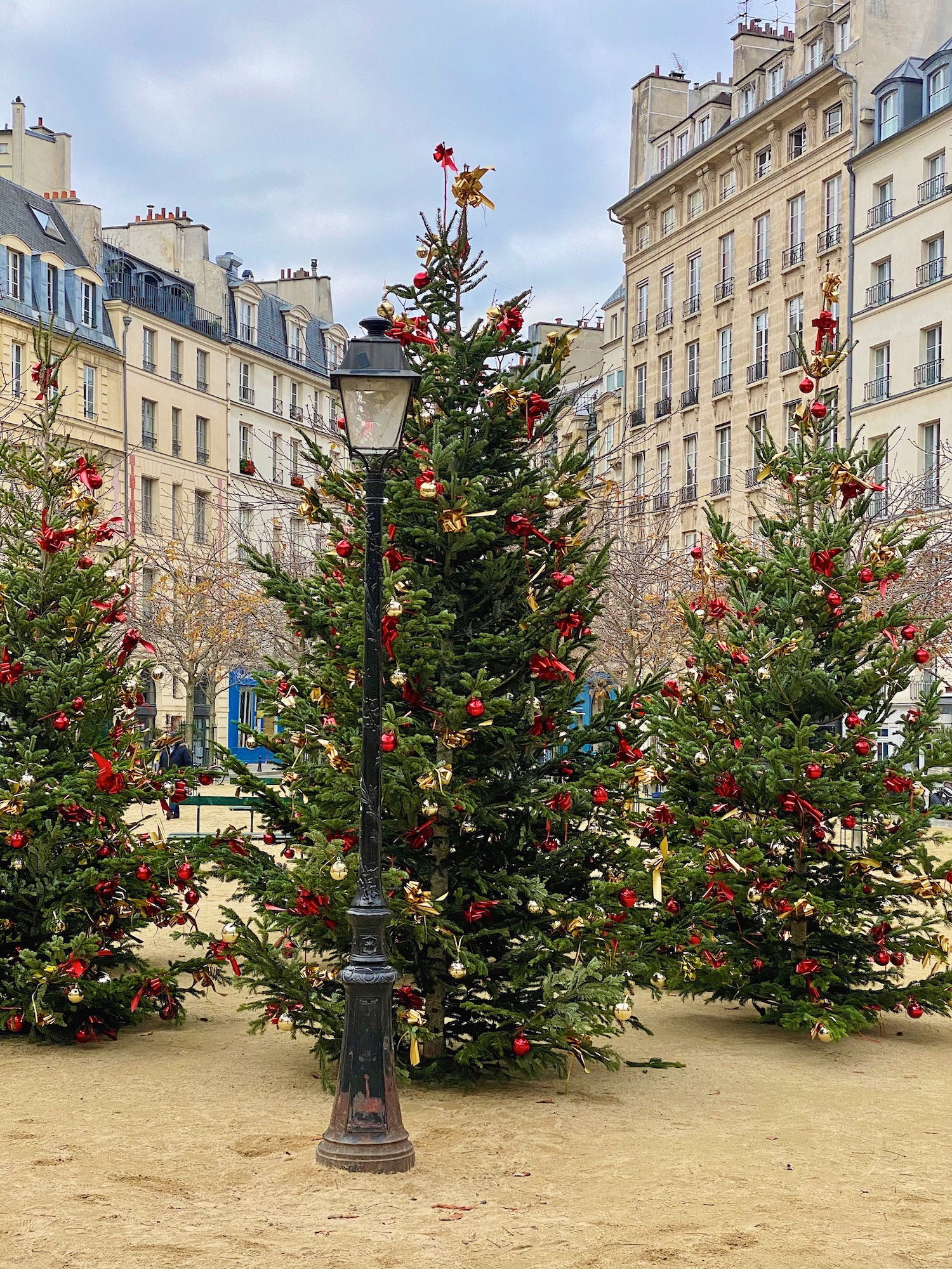 place dauphine christmas trees
