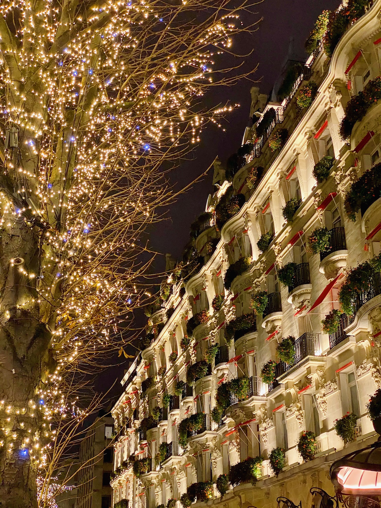the most beautiful christmas lights in Paris