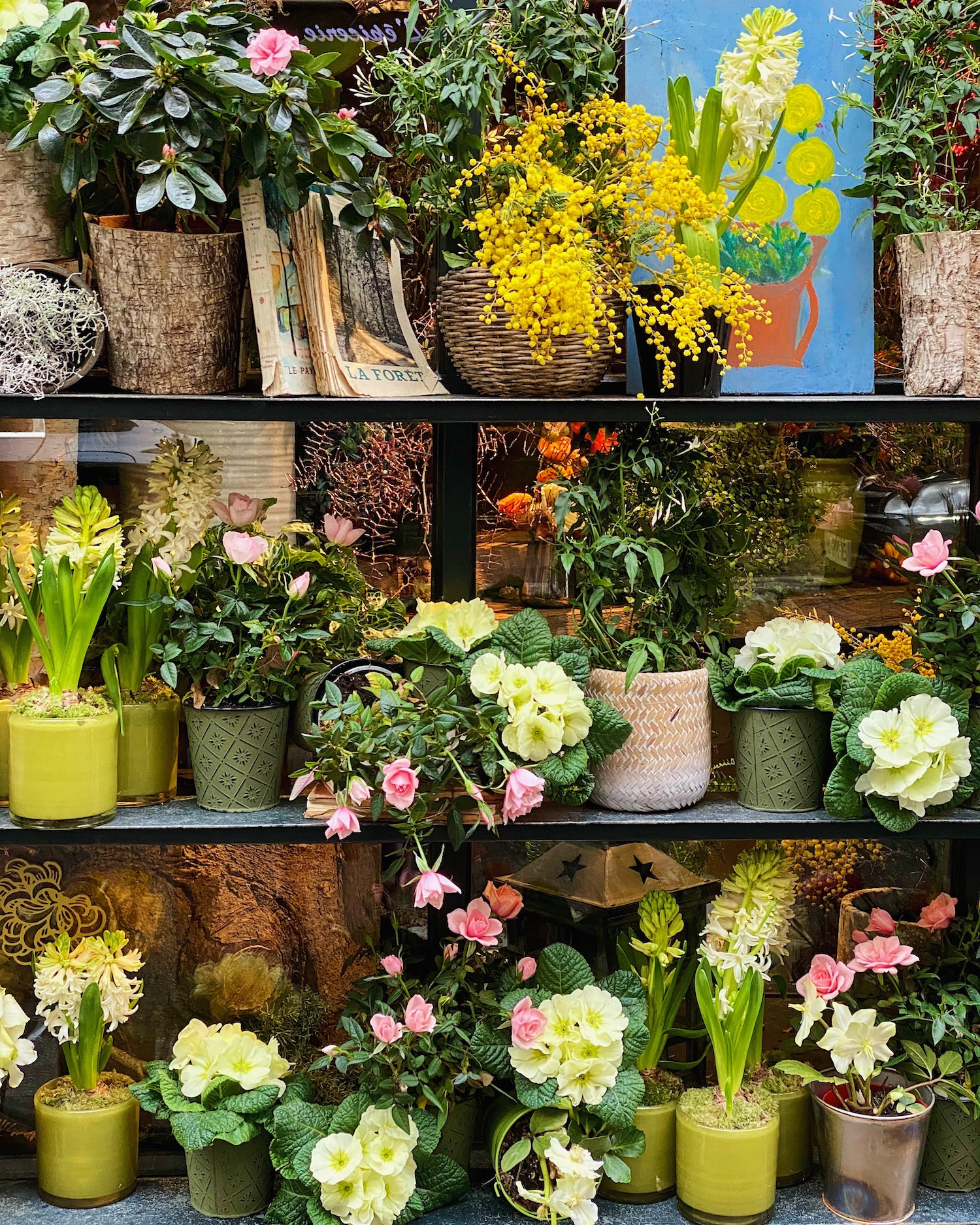 january flowers paris weekend links week three