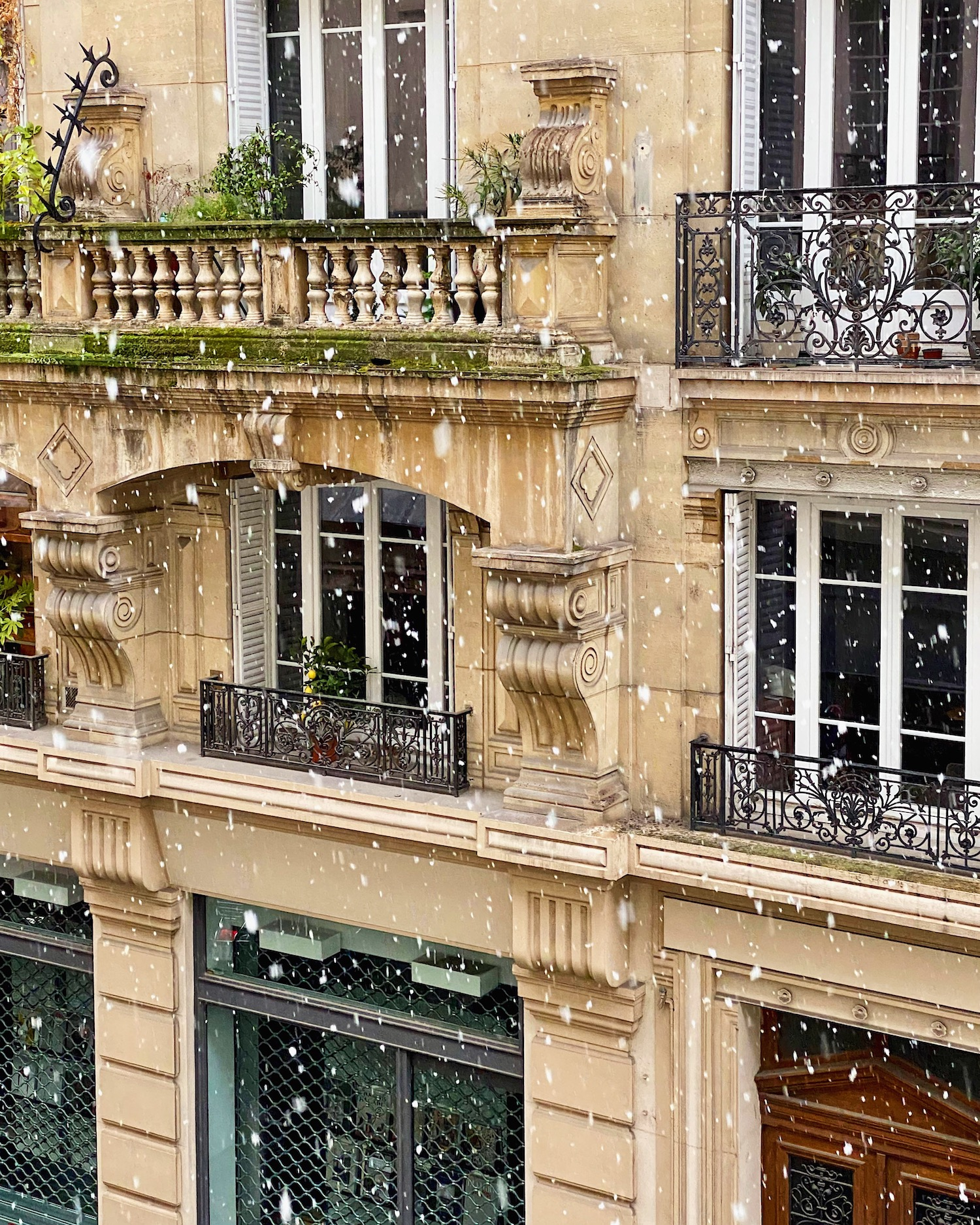 paris snow on rue de lille. five friday finds featuring the cuisine elégante french cooking experience