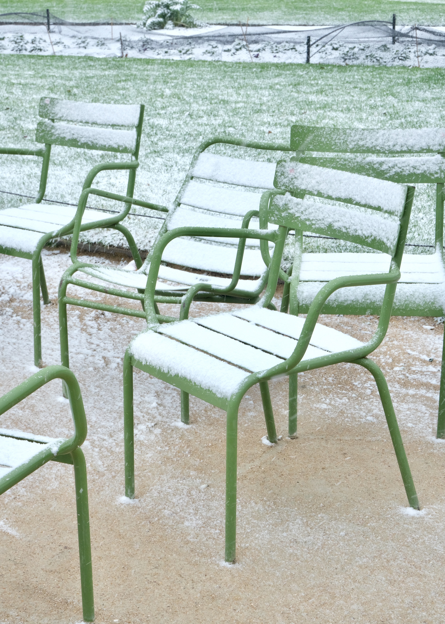 tuileries green chairs snow