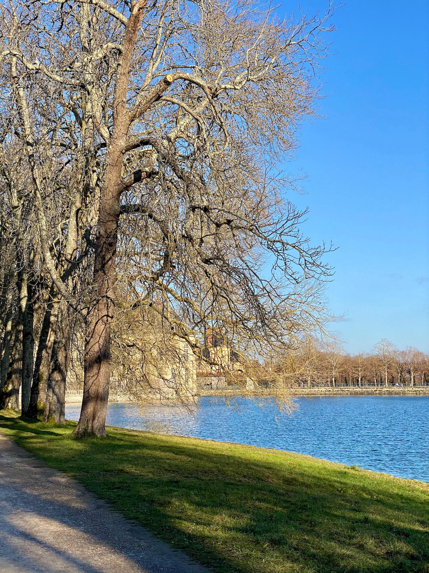 carp lake fontainebleau