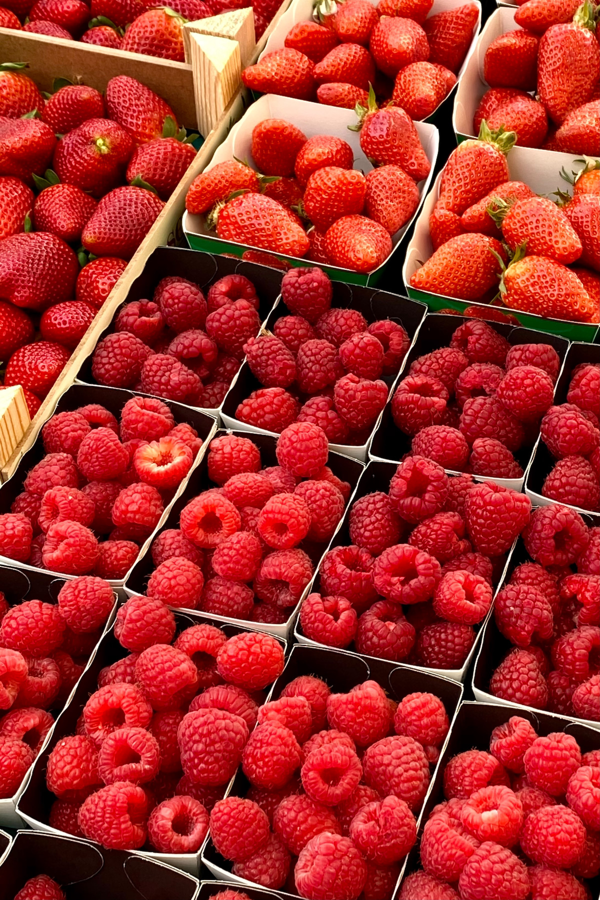 raspberry season at the market in france