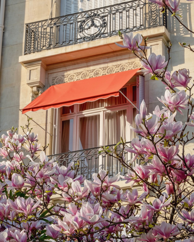 weekend links week thirteen the perfect spring view