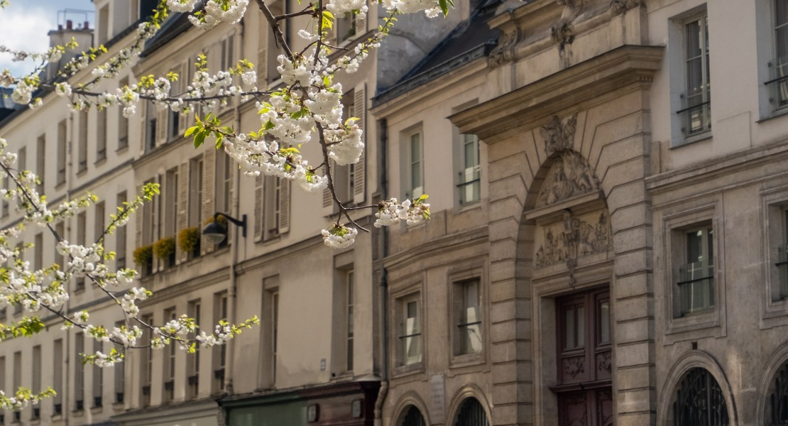 learning french in paris at lutece langue featured