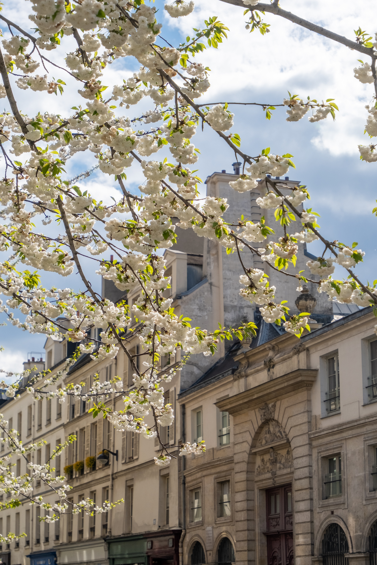 french courses in paris at lutece langue