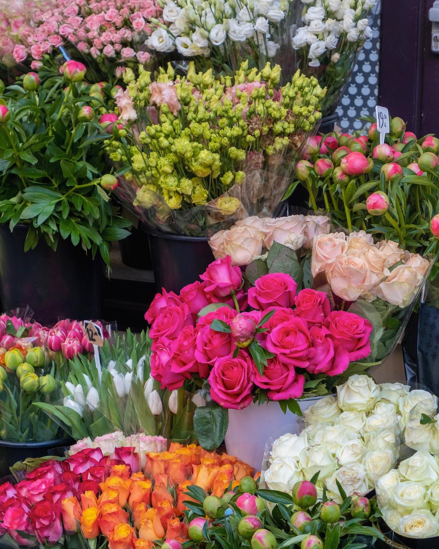 april flowers in paris