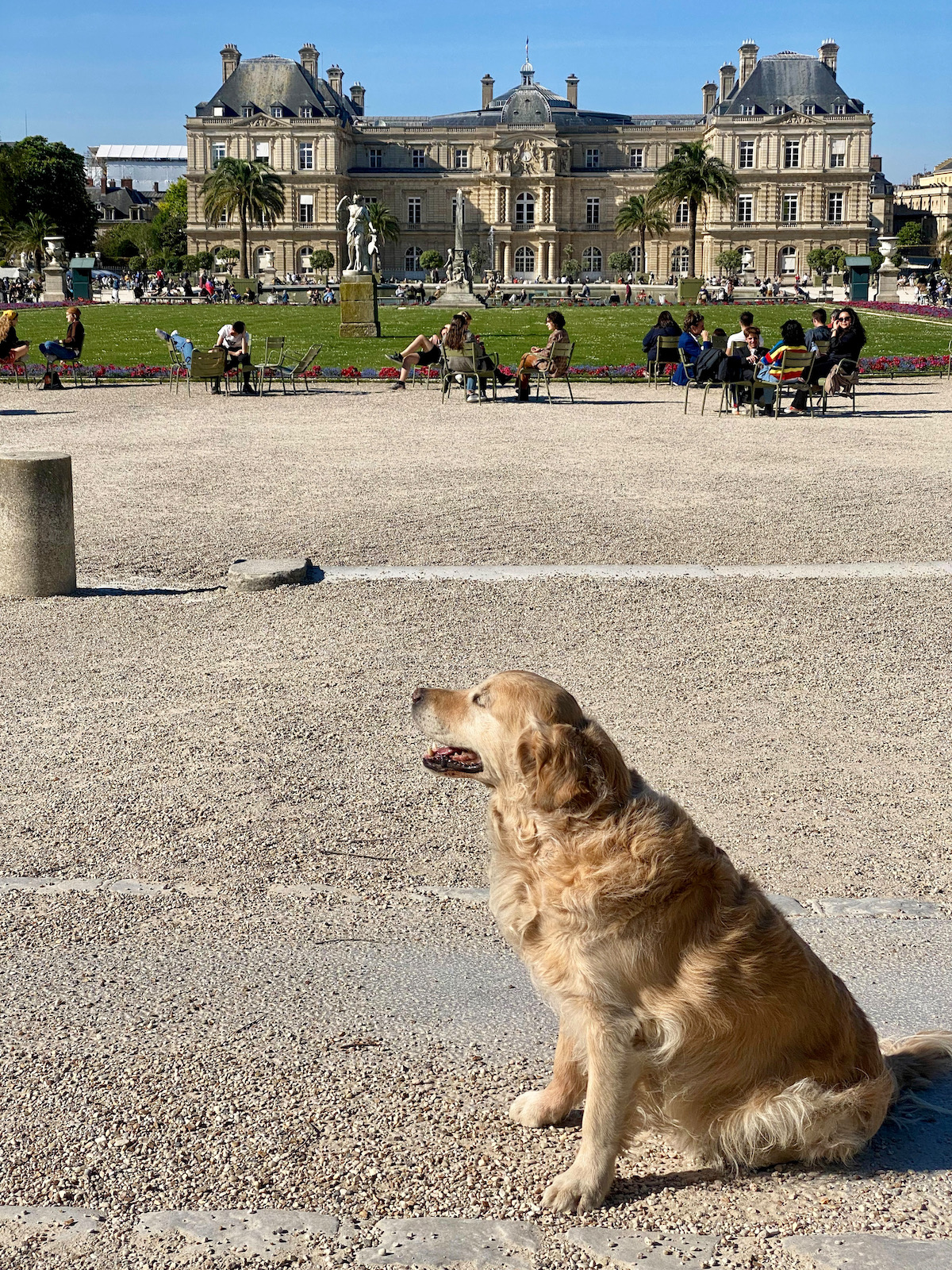 dog friendly jardin du luxembourg