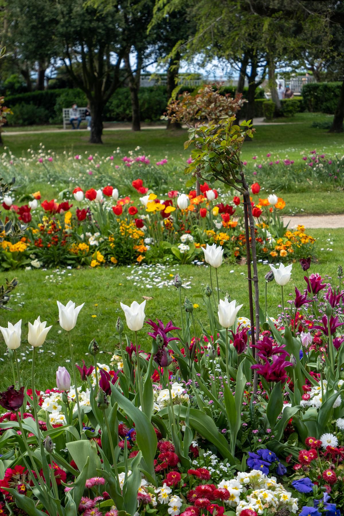 gardens at musée christian dior