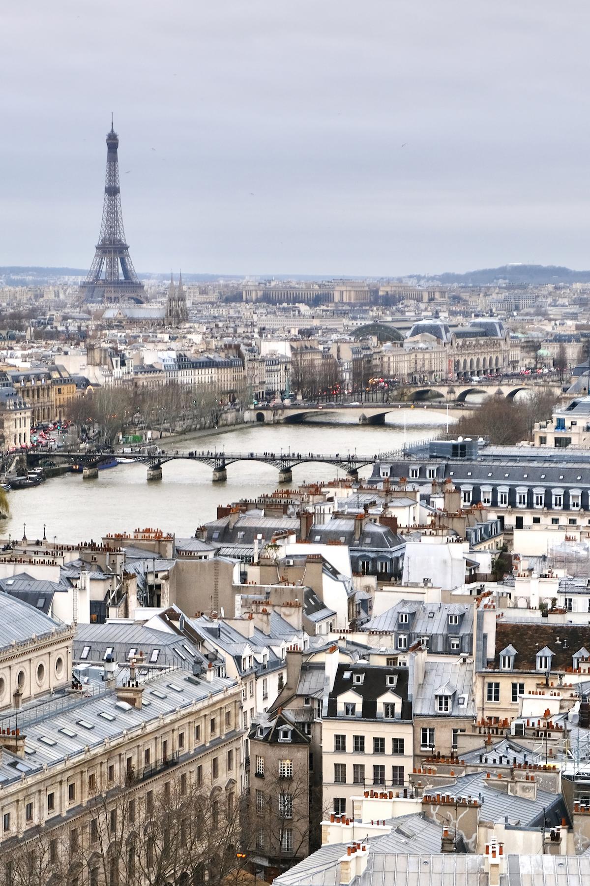 learning french in paris lutece langue paris skyline