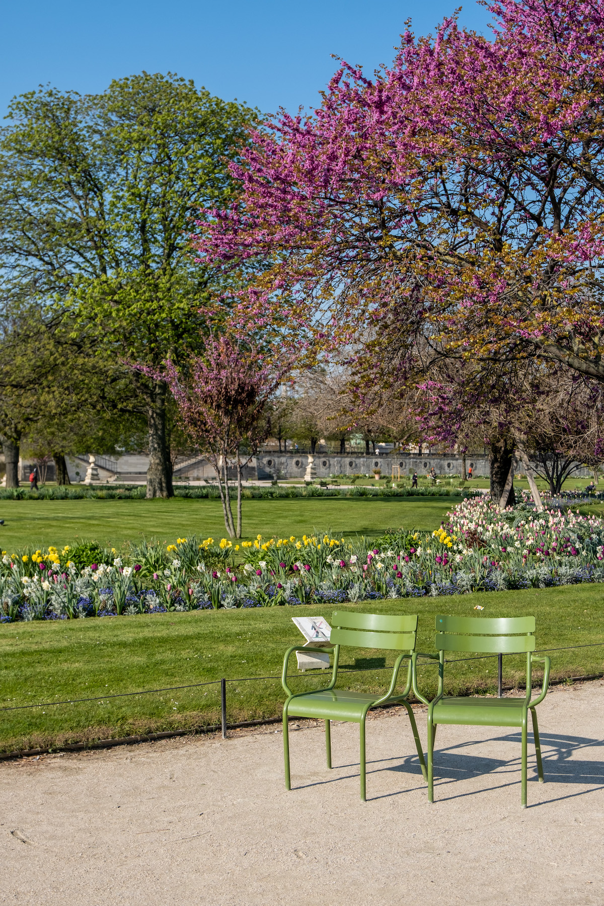 green chairs and pink trees in the tuileries