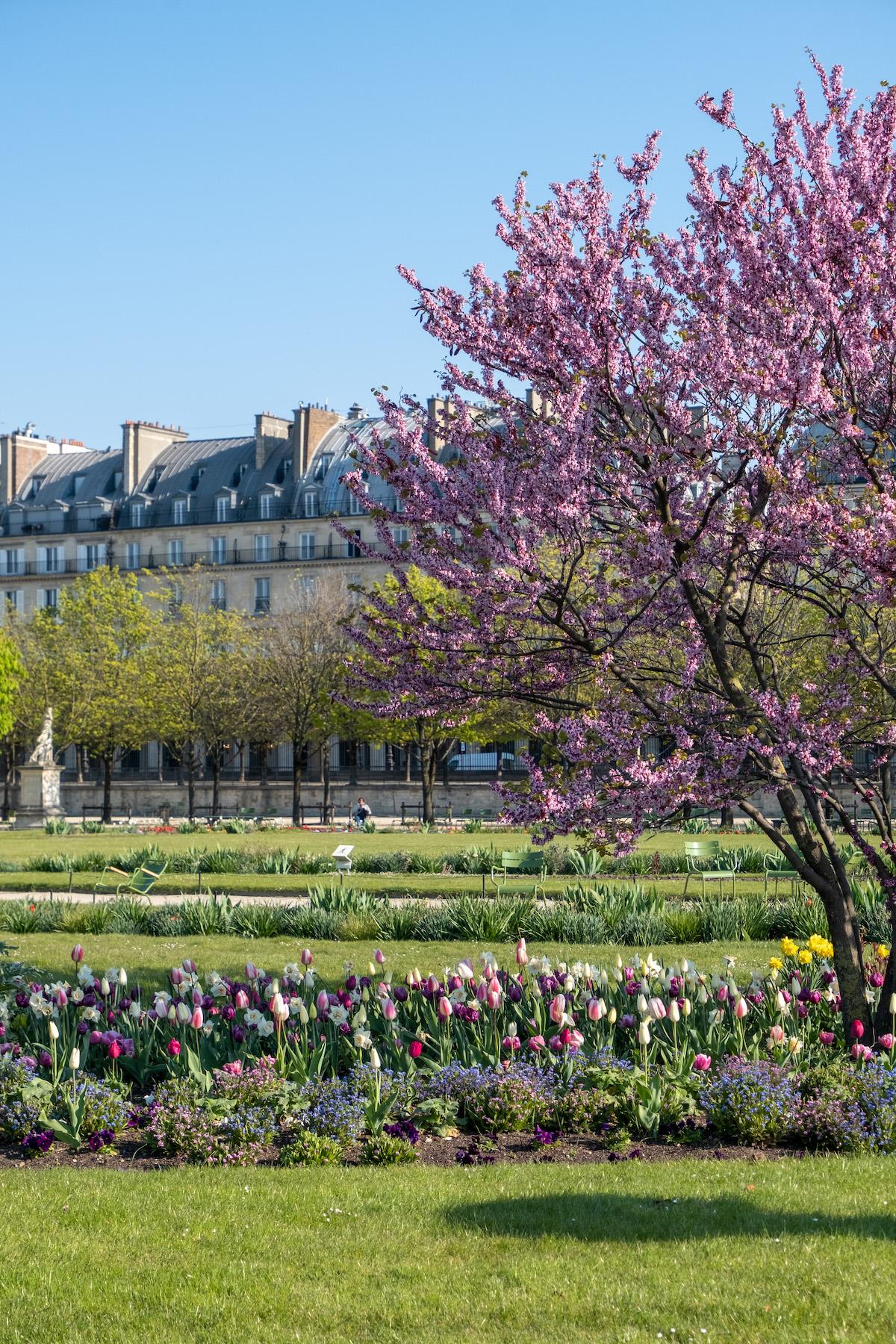 april in the jardin des tuileries