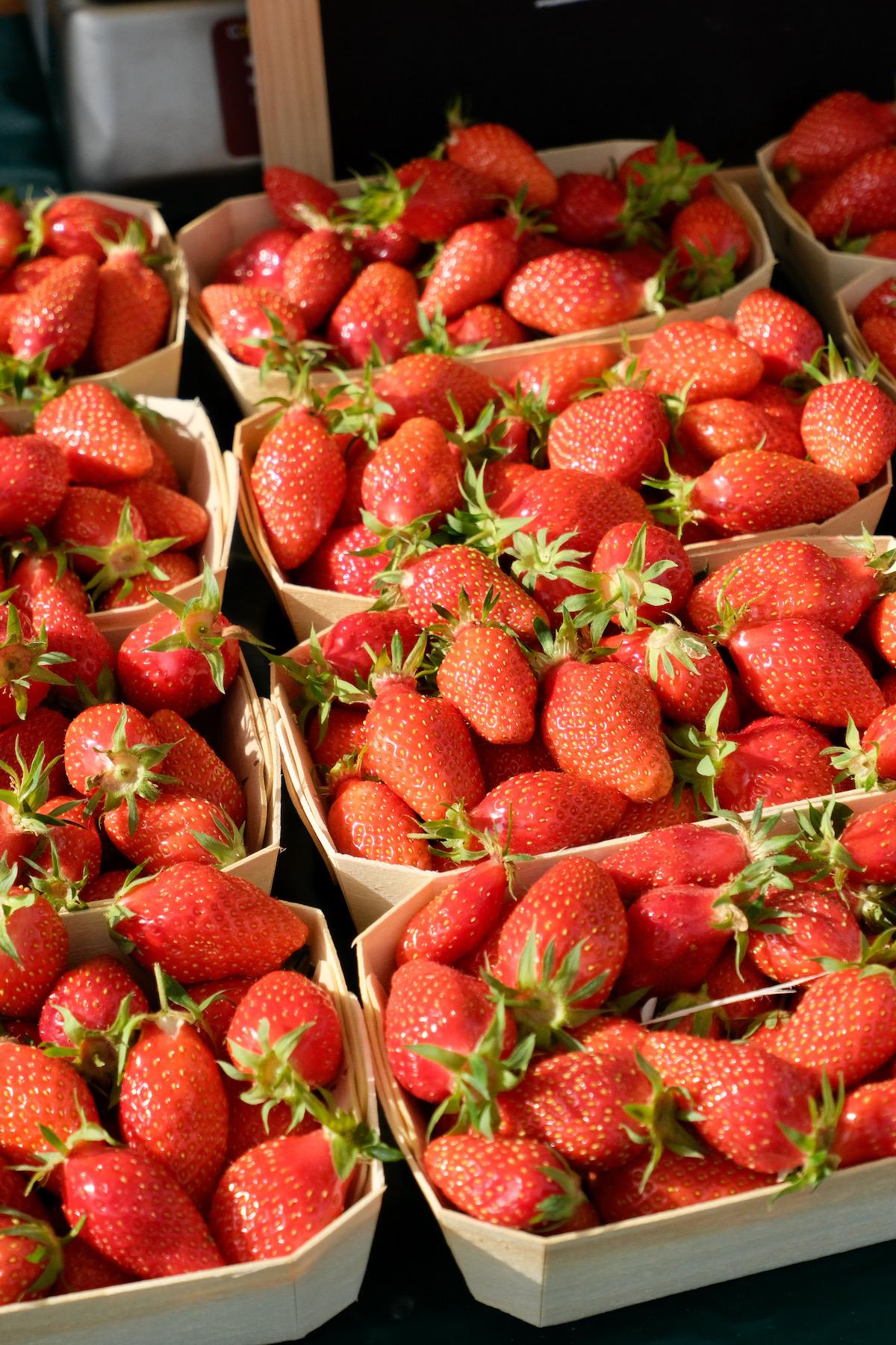 fresh french strawberries