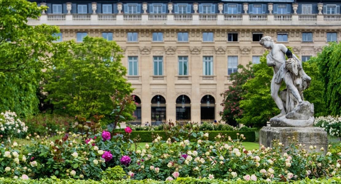 palais royal roses featured