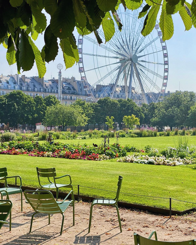 summer in the jardin des tuileries