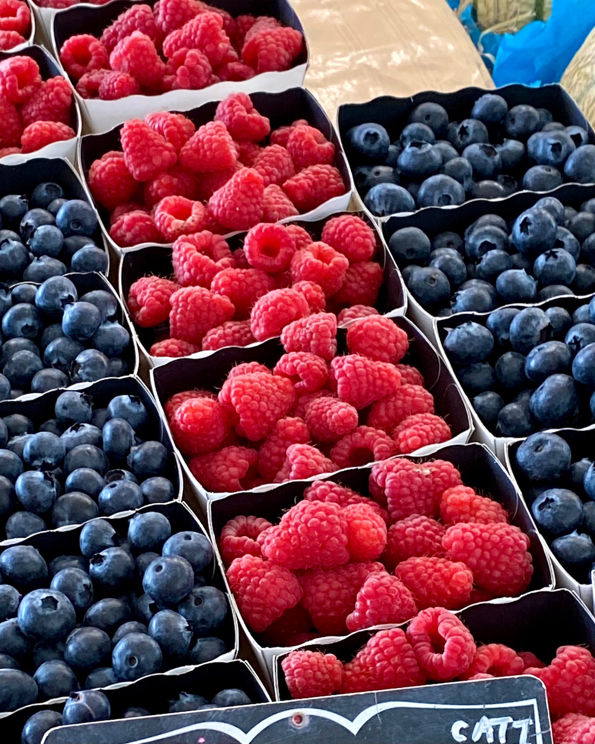 french berries at the market